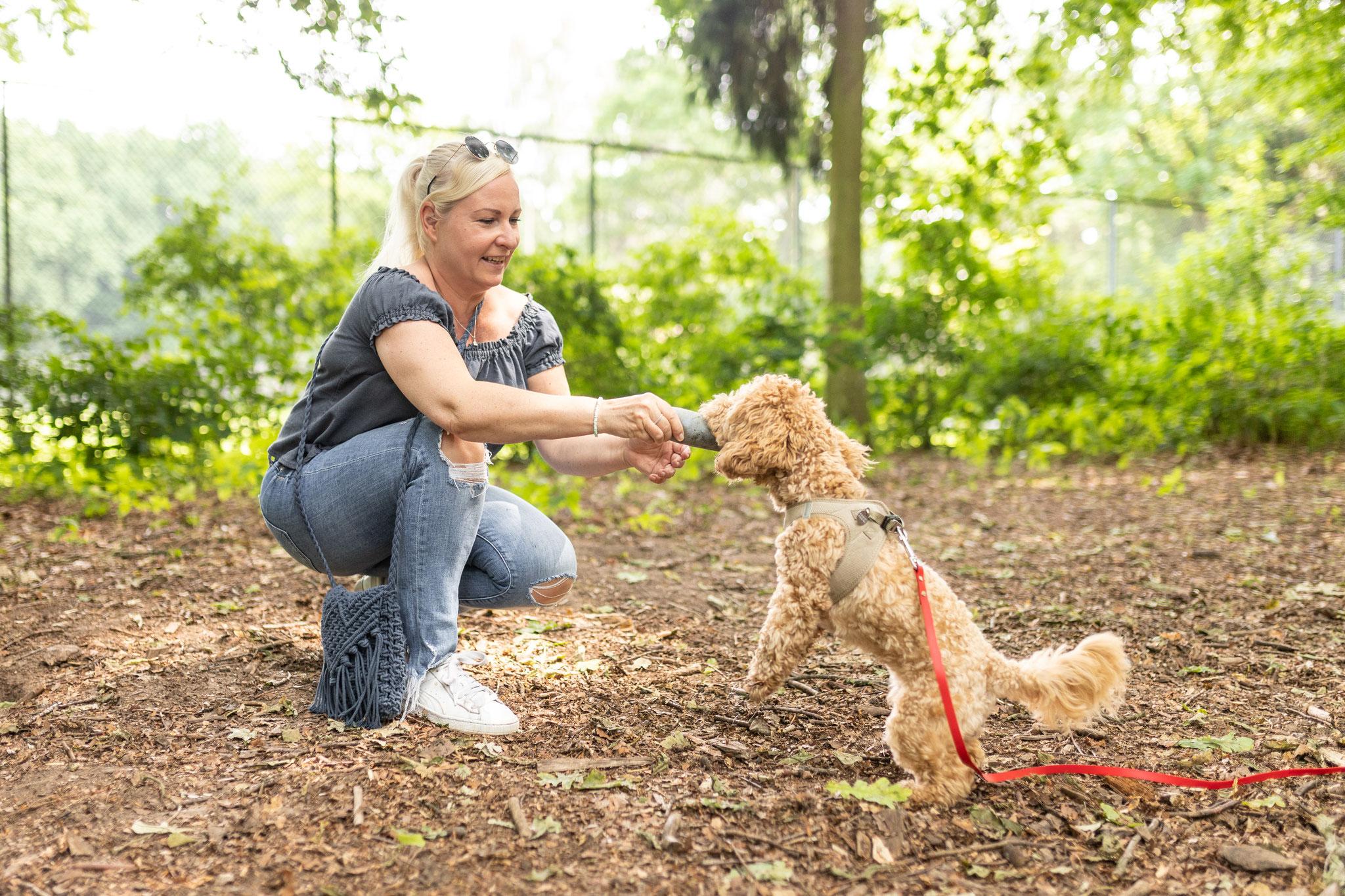 Ein Hund bringt seinem Frauchen beim Fun-Kurs im Hamburger Volkspark einen Dummy