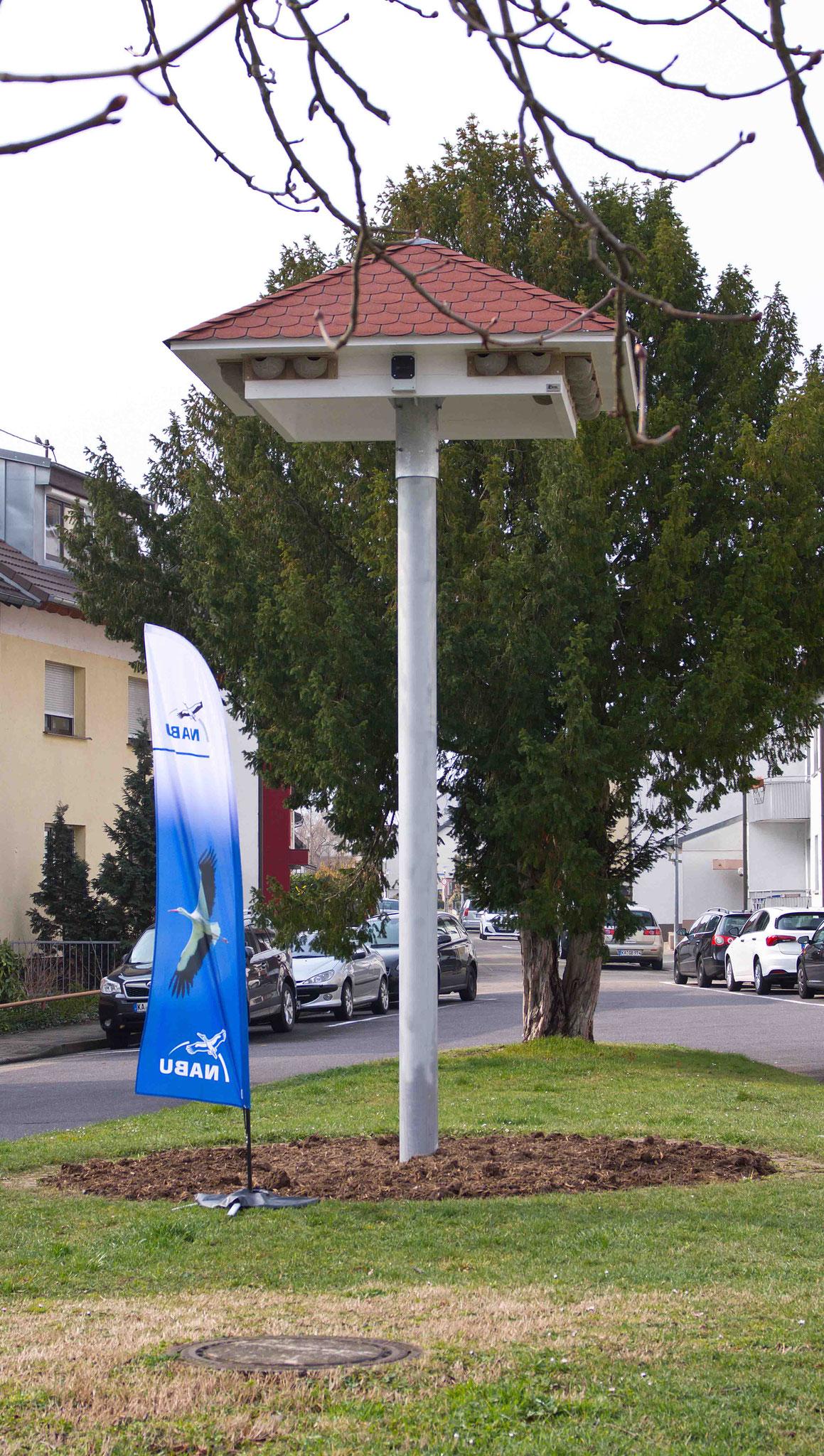 Im März 2018 wurde das Schwalbenhaus in Neureut aufgestellt. Ob Mehlschwalben das Nistangebot wohl annehmen?