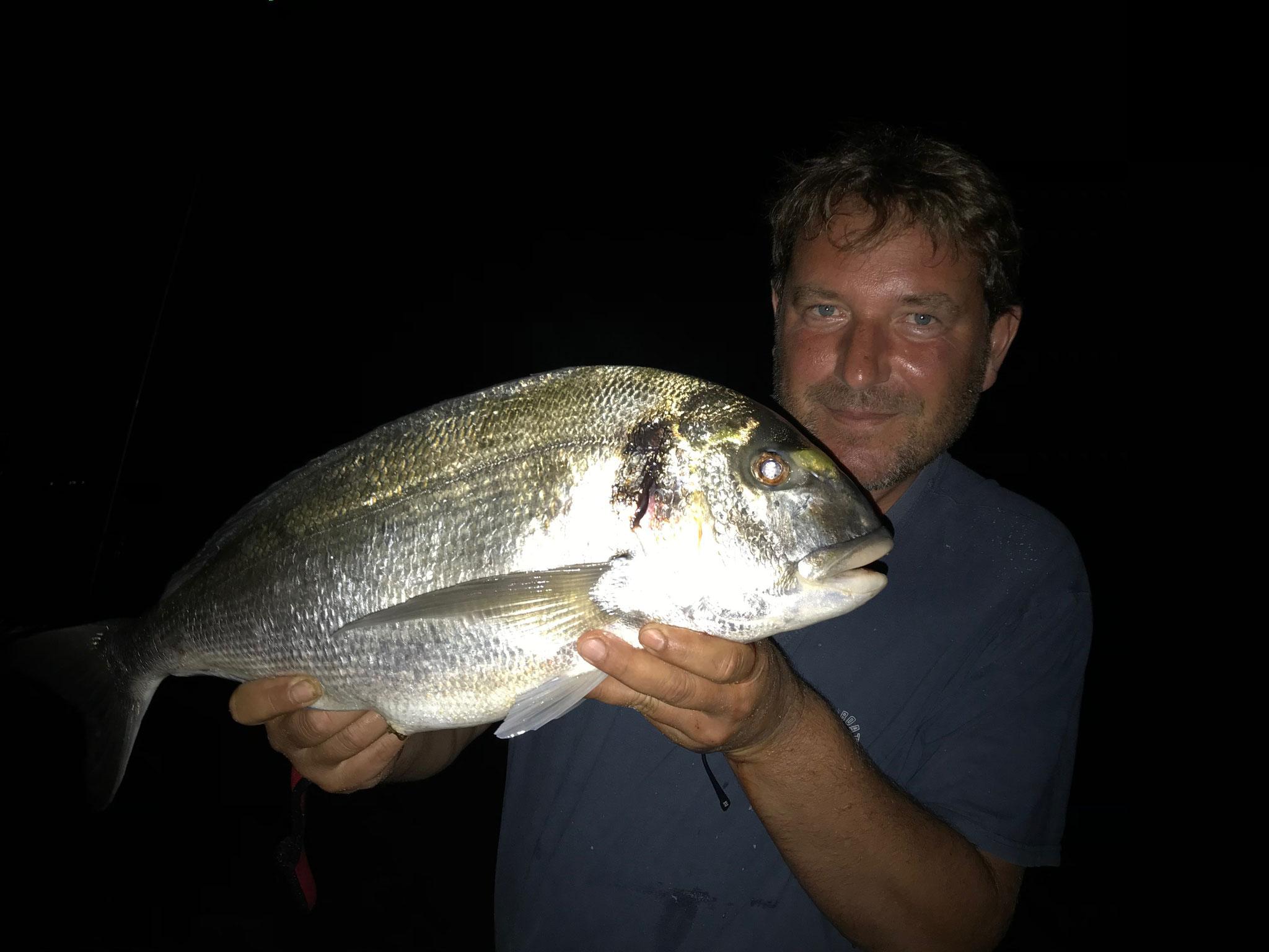 pêche de nuit et la jolie royale