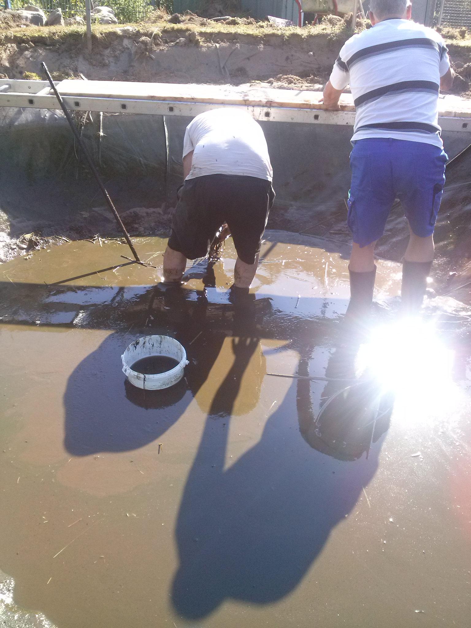 Die schlimmste Arbeit, mit Eimern den Teichschlamm rausholen, die Pumpe schafft das nicht mehr!