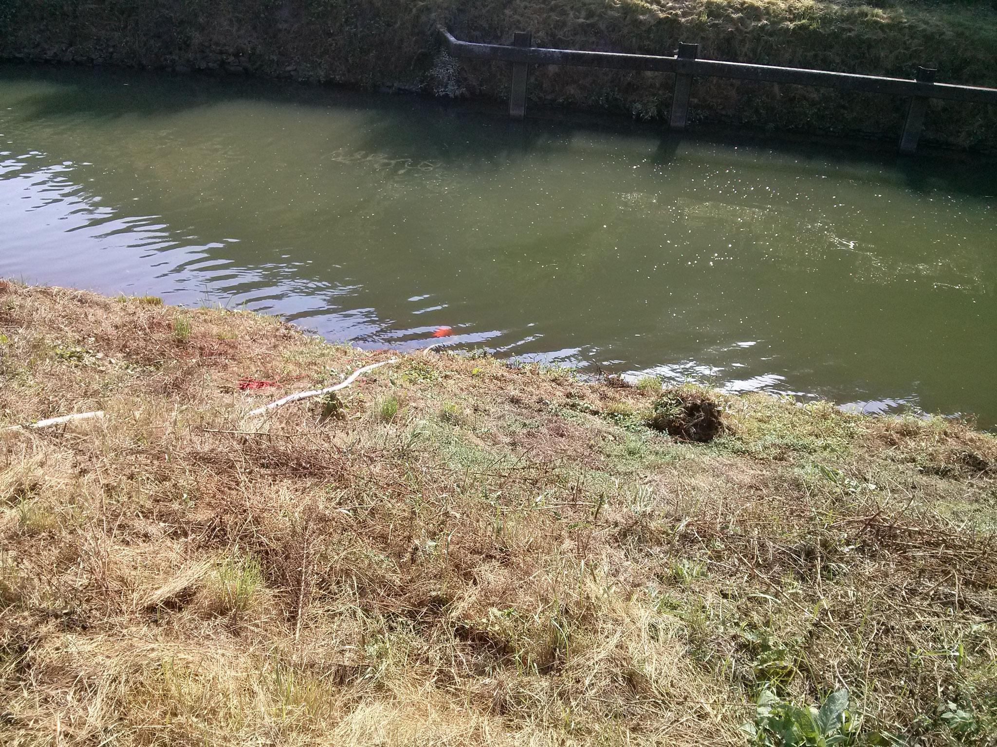... die hilft uns den Teich zu füllen mit frischem Lahnwasser.