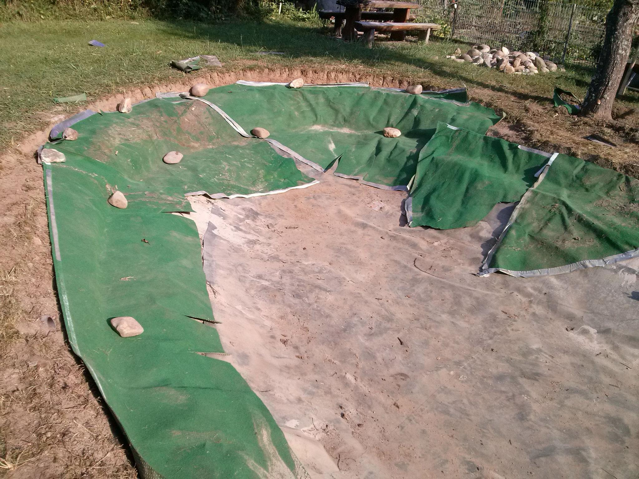 Zuerst kommt grüner teppich über die neue Kante, der sorgt für Stabilität.