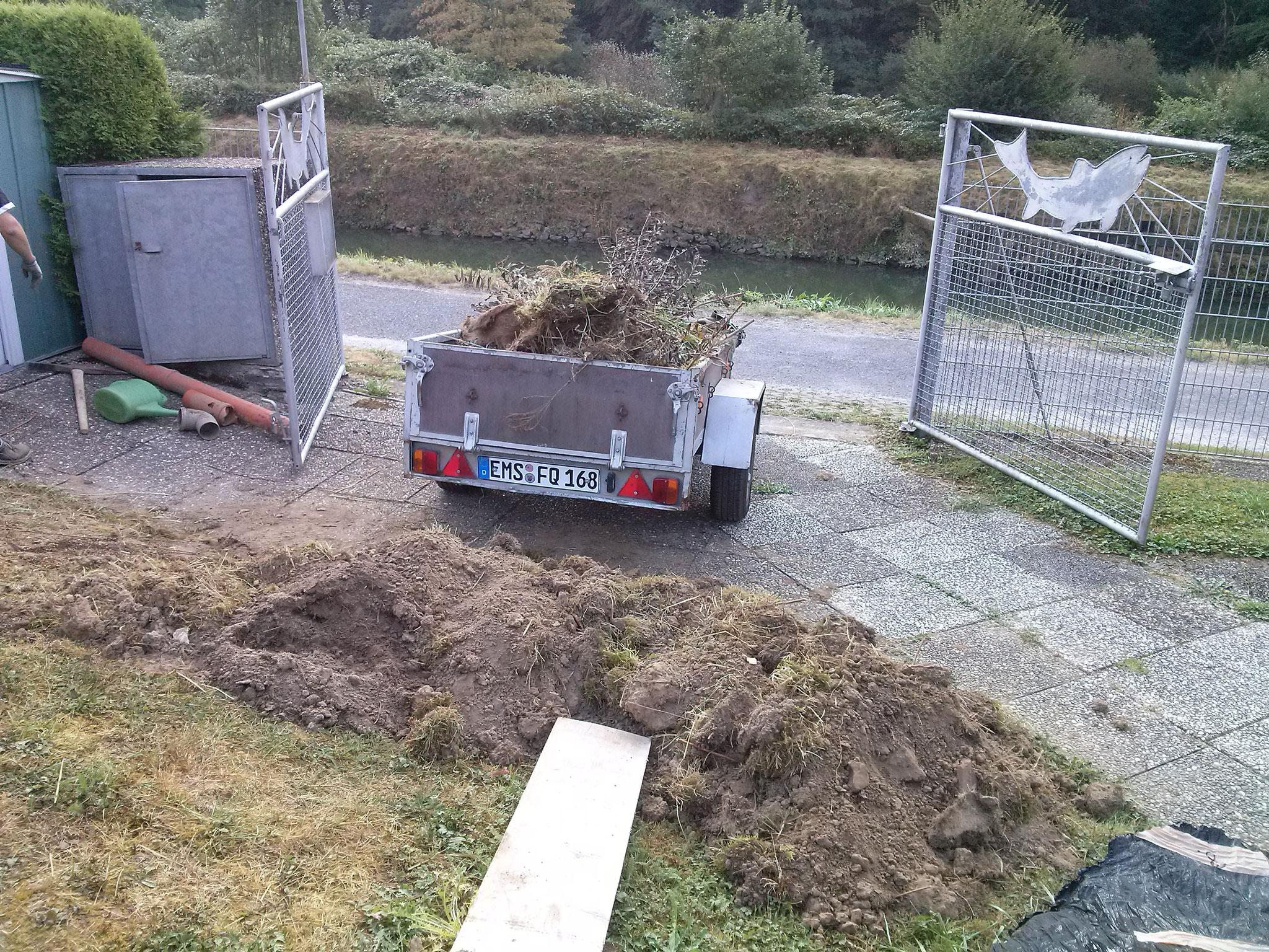 ... und wurde sofort entsorgt, dafür pflanzen wir zwei neue Bäume, versprochen!