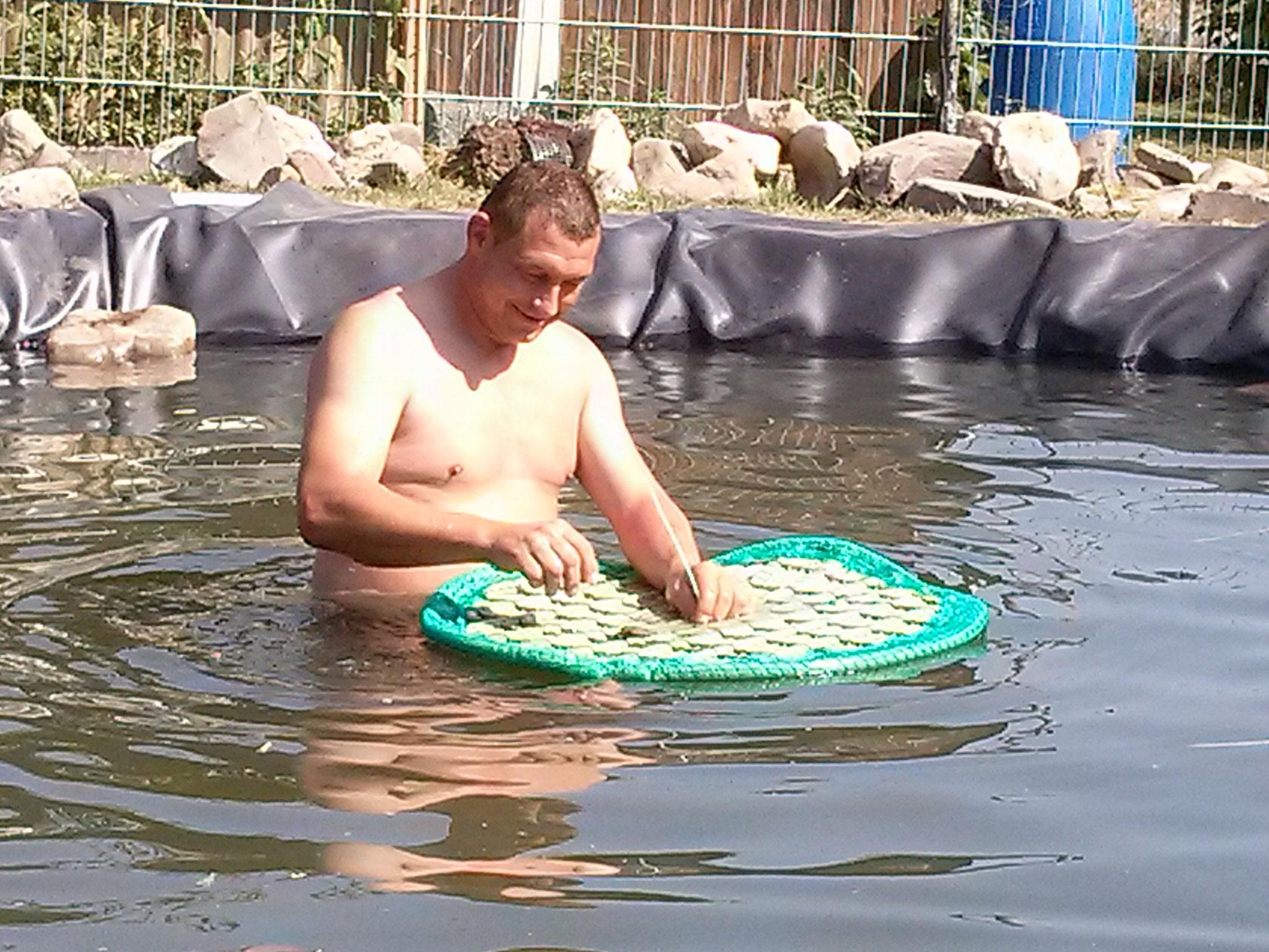 ... und wenn er schon mal drin ist, dann kann er die Schwimminseln noch befestigen.