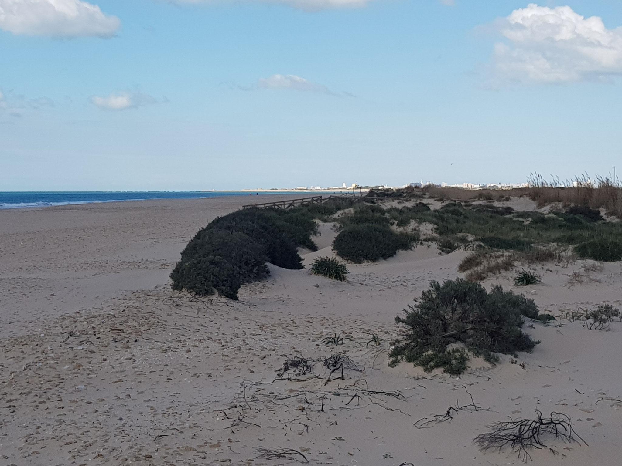 im Hintergrund am Horizont ist Cadiz zu erkennen