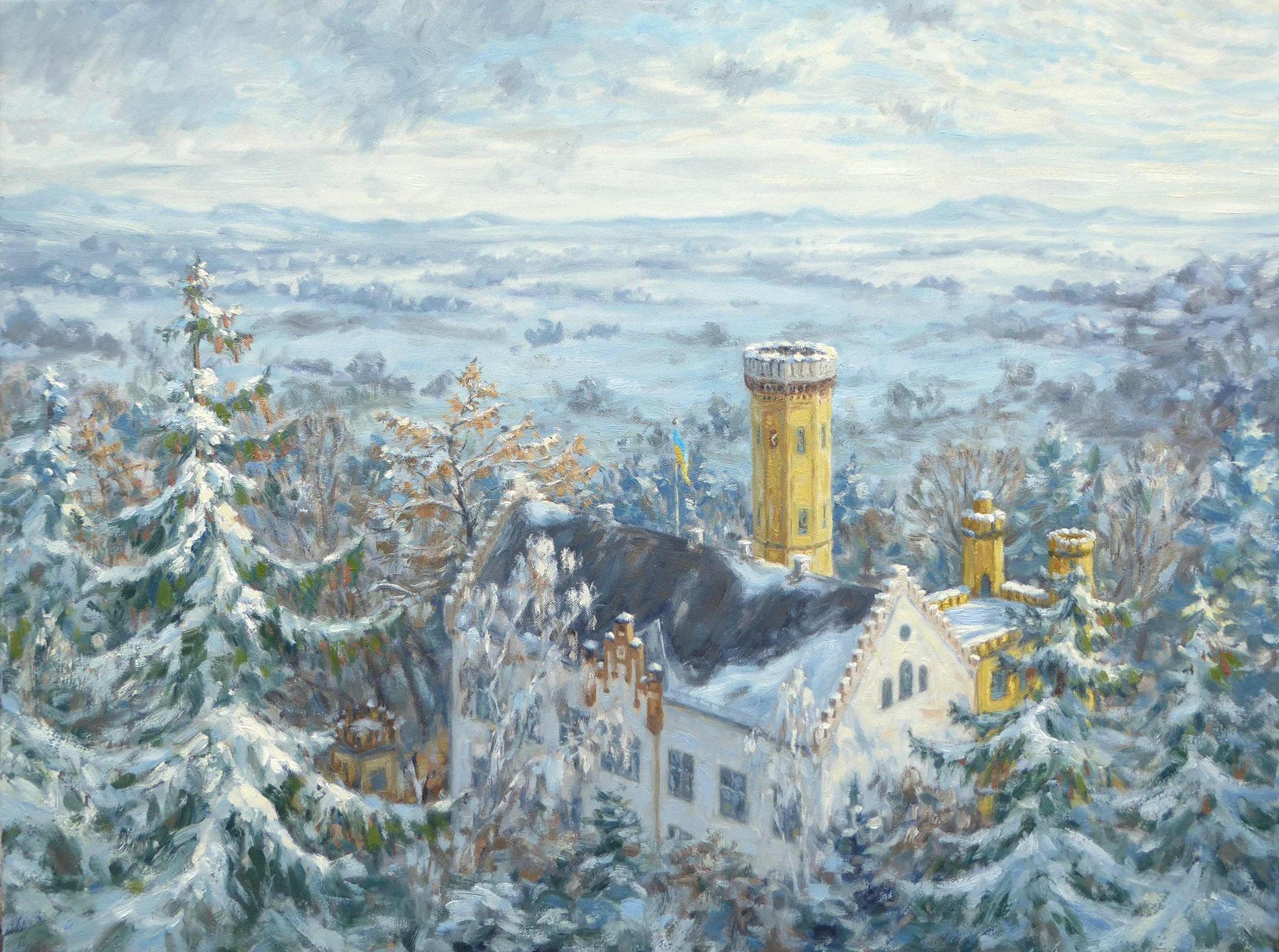 """Schloss Wellenburg im Winter"""
