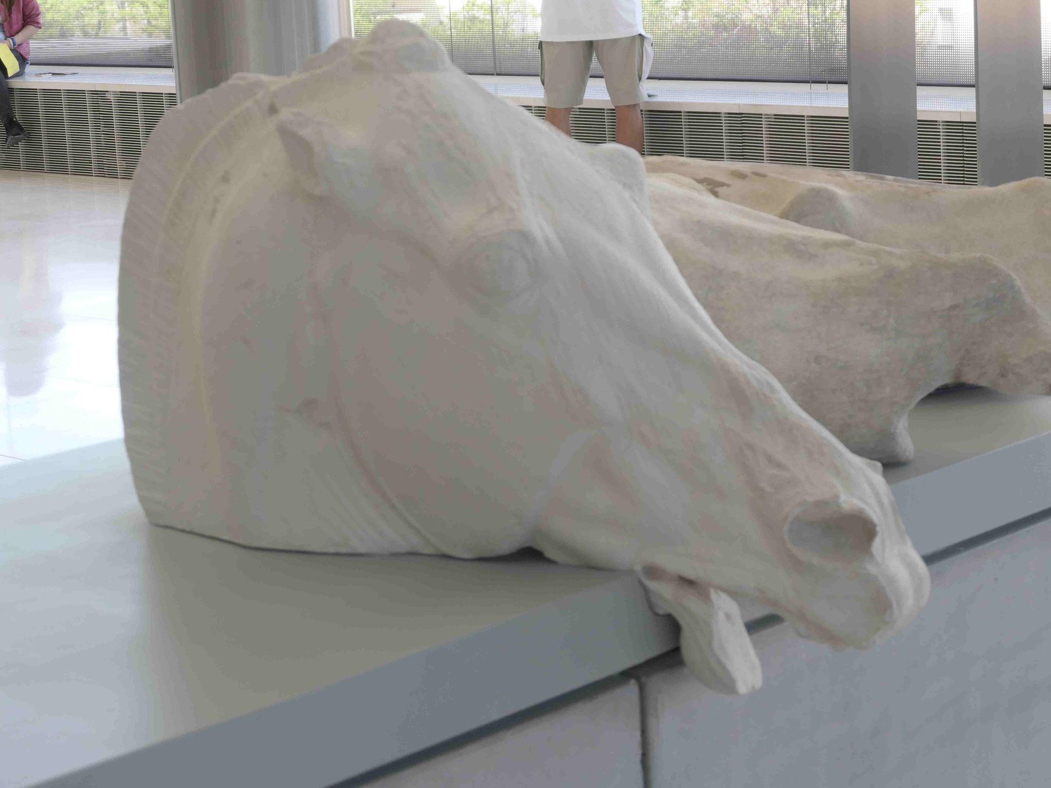 Kopf eines erschöpften Pferdes vom Parthenontempel  im Akropolismuseum, Athen