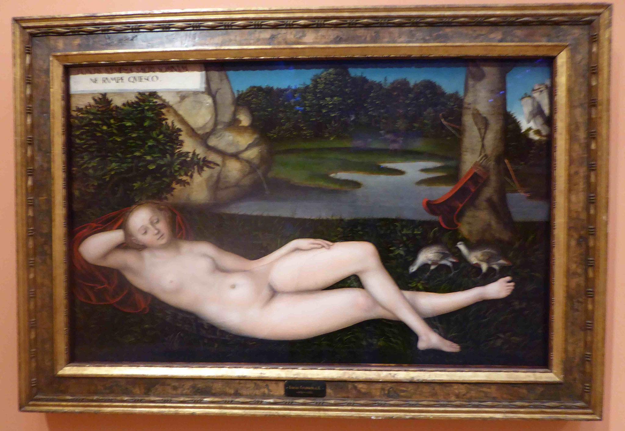 Lucas Cranach, Museo Thyssen-Bornemisza, Madrid, Spanien