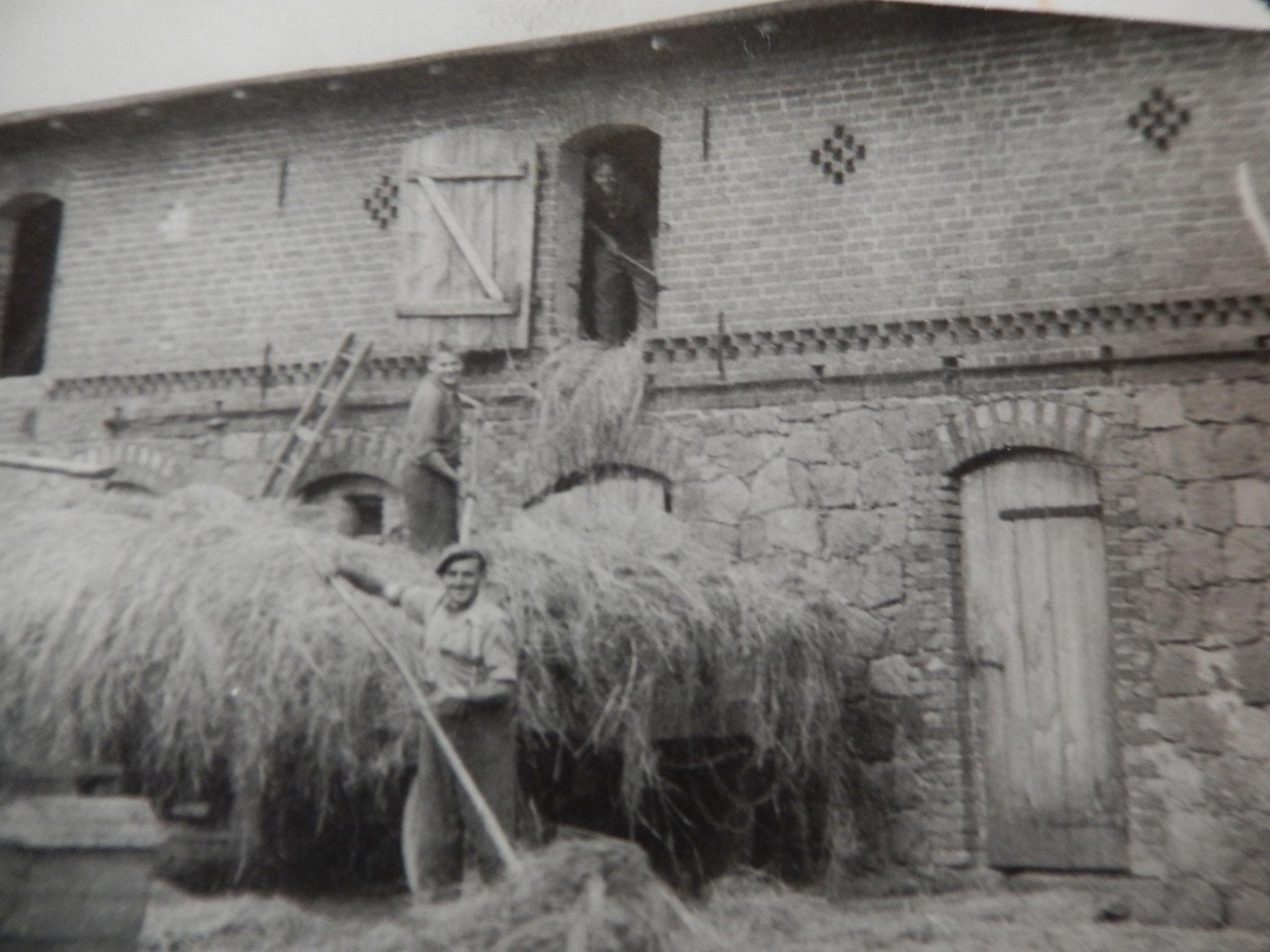 Wir sind ein landwirtschaftlicher Familienbetrieb, der bereits seit vielen Generationen besteht. Noch immer lagern wir unsere kleinen Bunde auf diesem Stroh- und Heuboden.