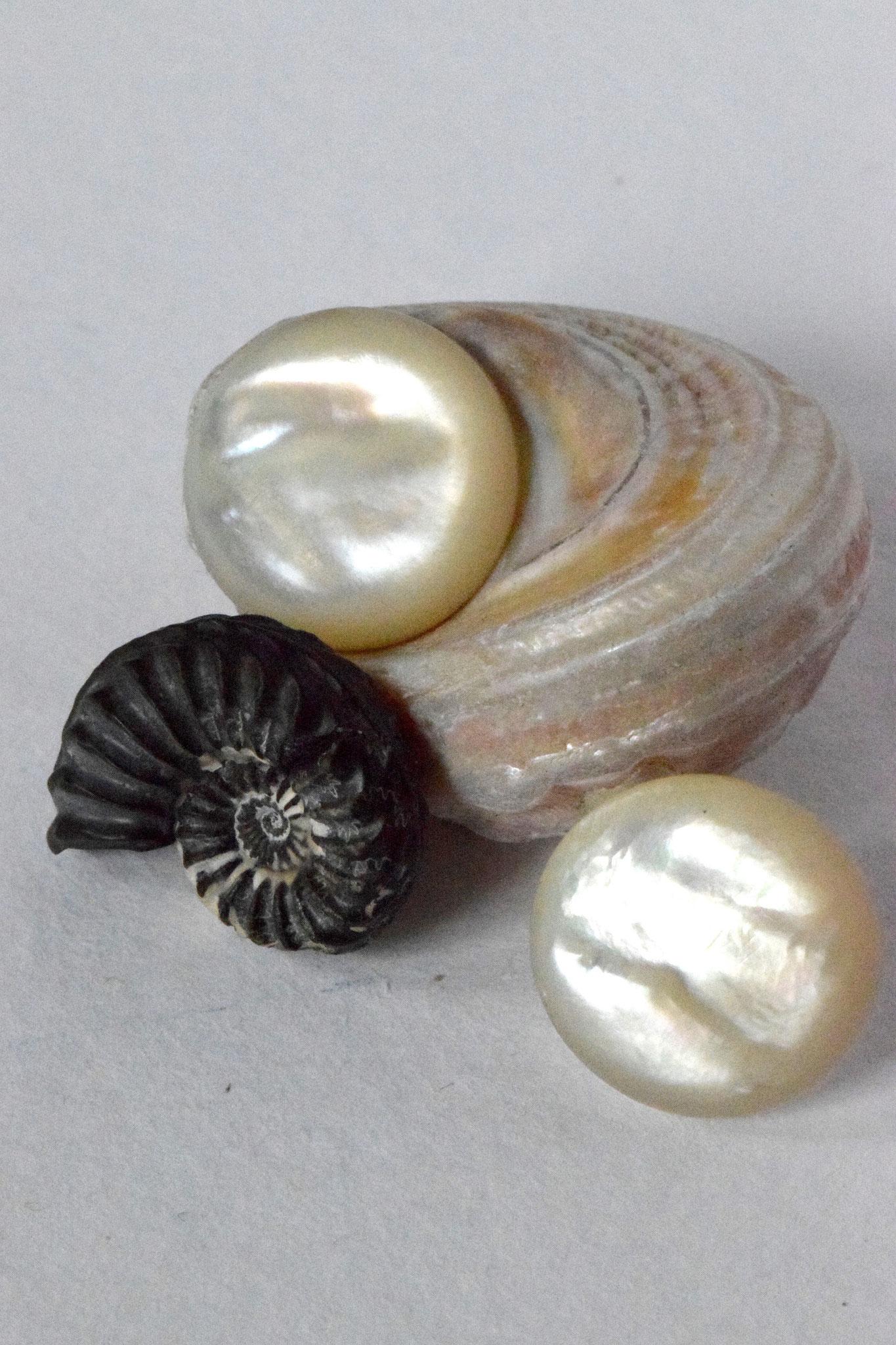 Ohrstecker Perla