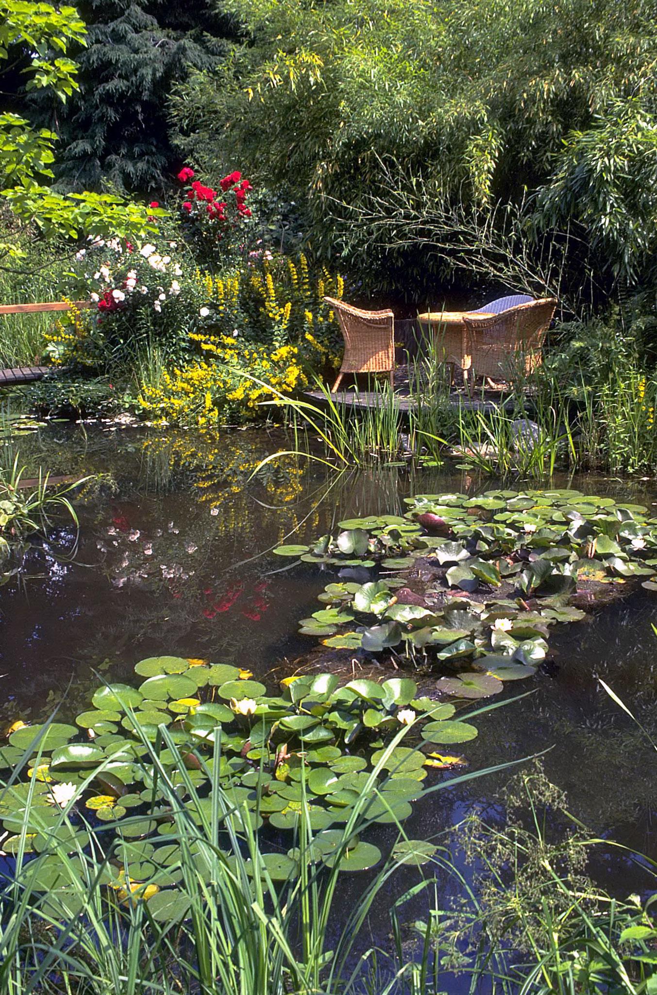 Teich bach rinne quellstein oder wasser belebt for Gartenbeispiele gestaltung