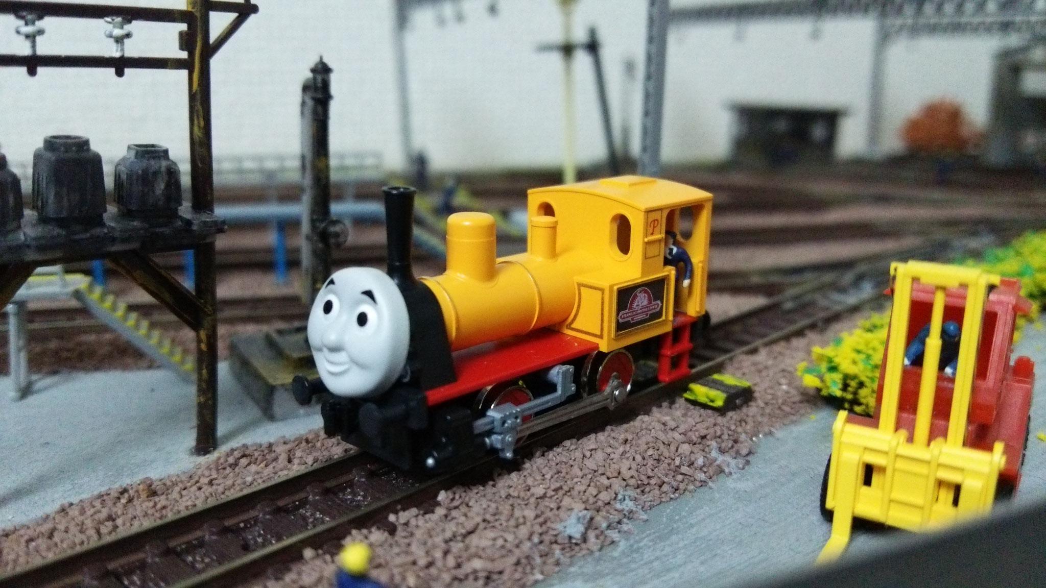 MSL蒸気機関車「マコトーサ」