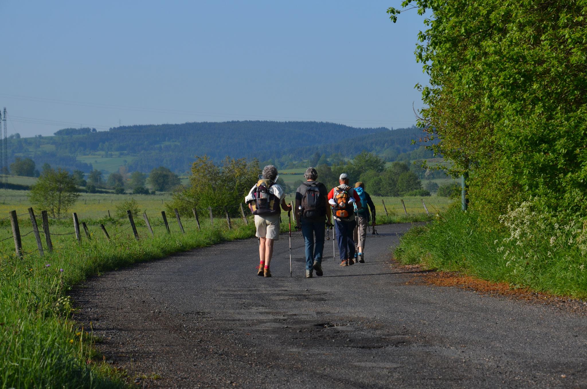 Départ randonnée du gîte d'étape La Margeride à saugues