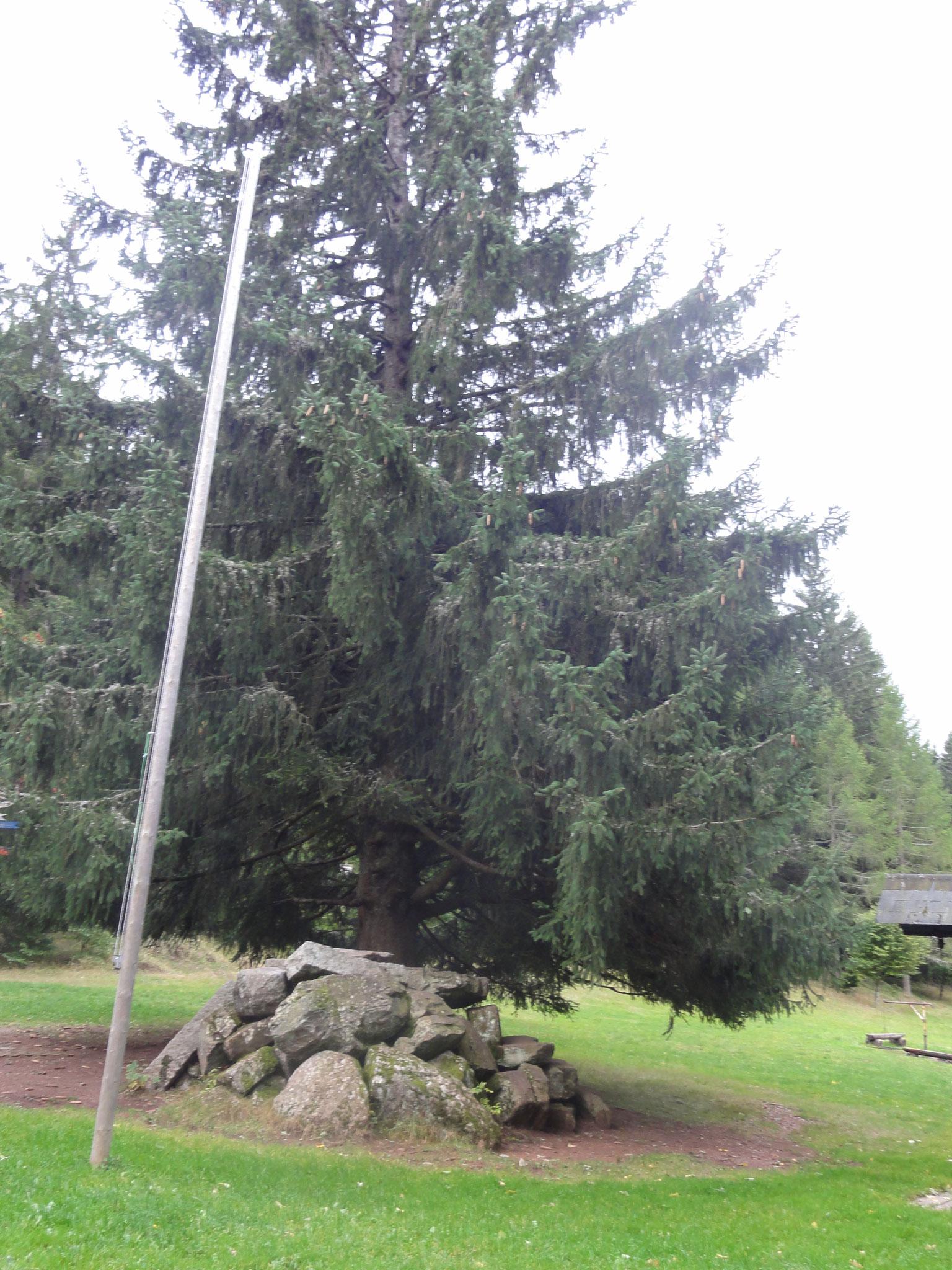 Klettersteine Haupthaus