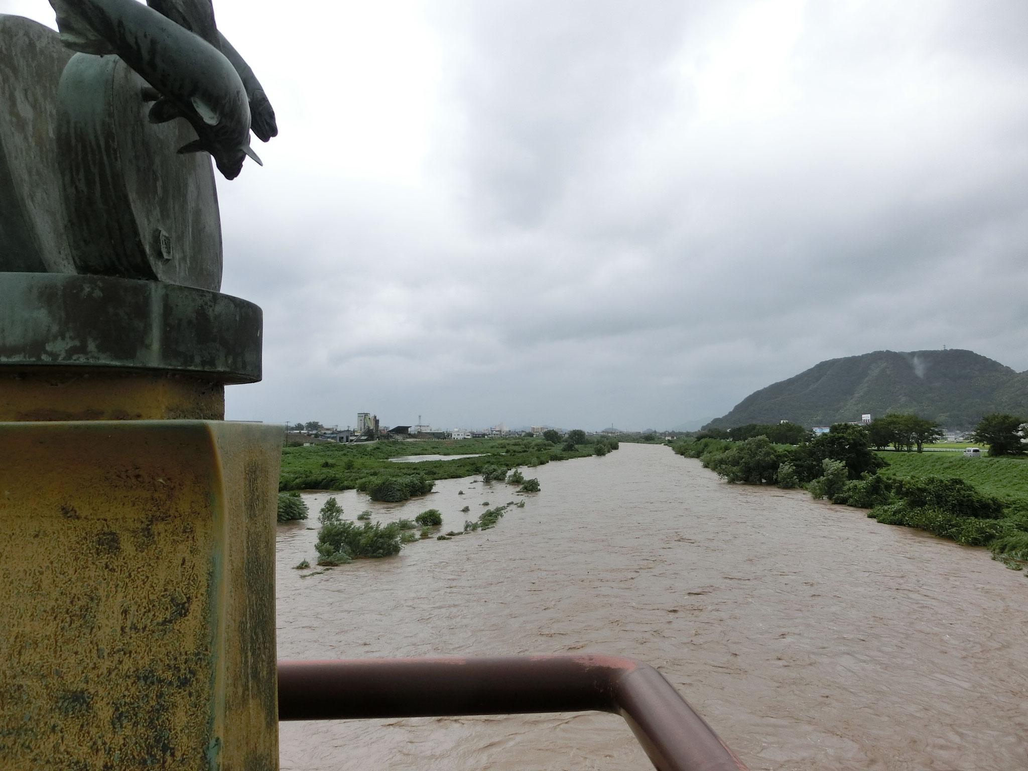 H29.8.8  10時20分  日野大橋下流
