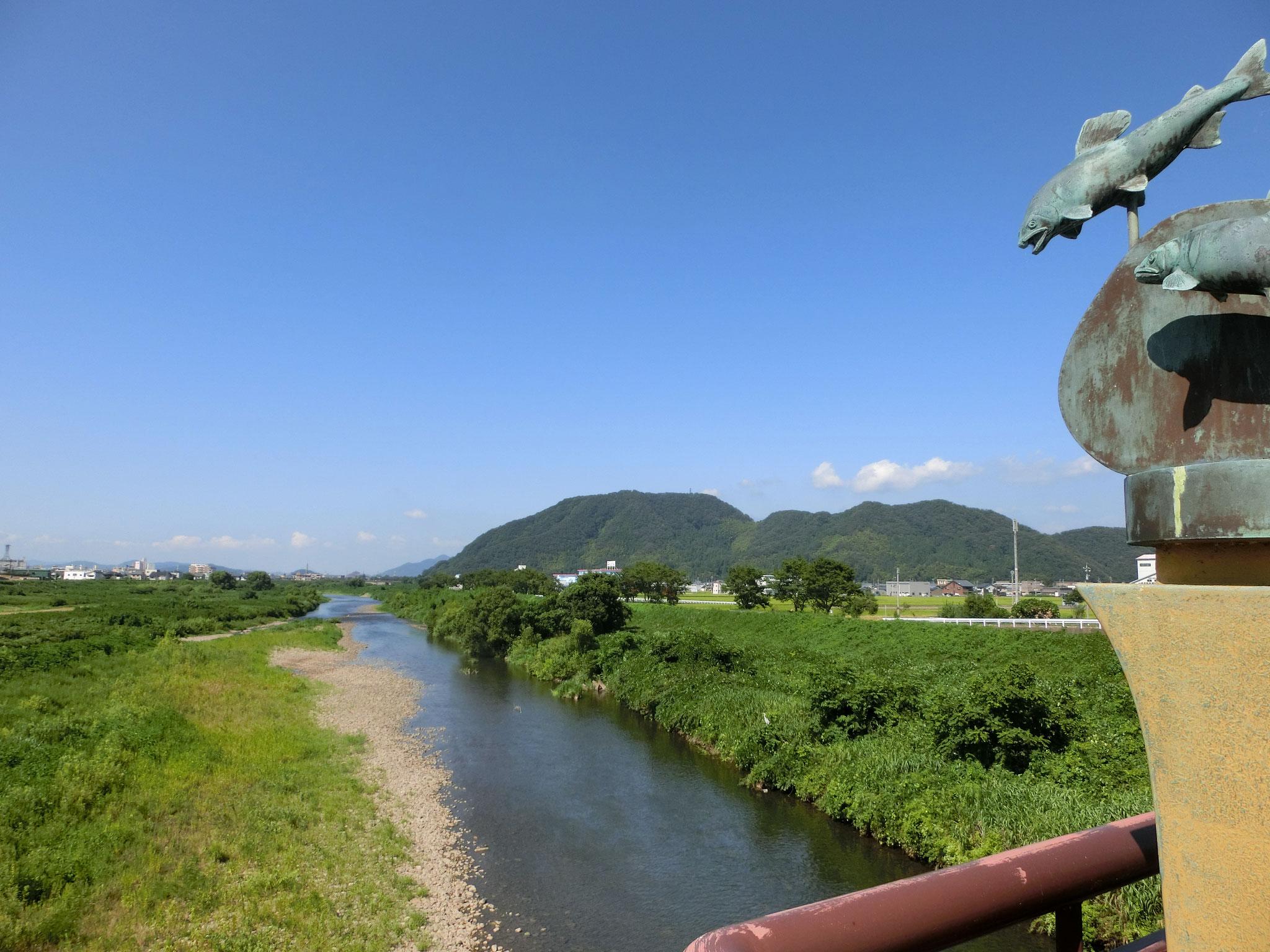 H28.8.8 15時 越前市 日野大橋下流
