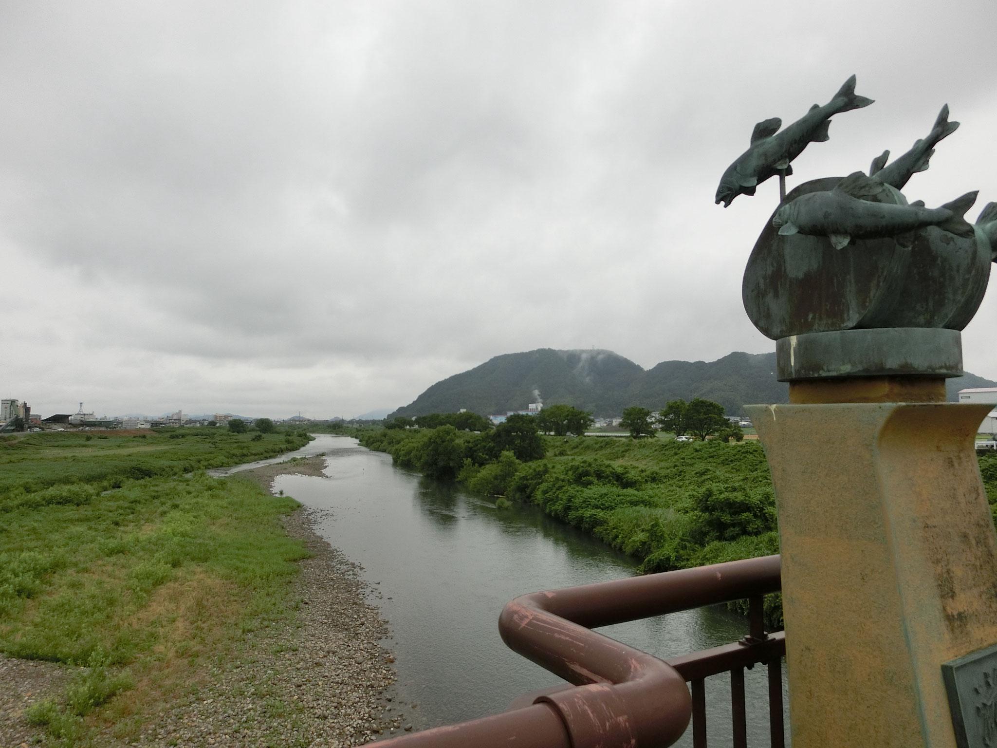 H28.5.30 8時30分 越前市 日野大橋下流