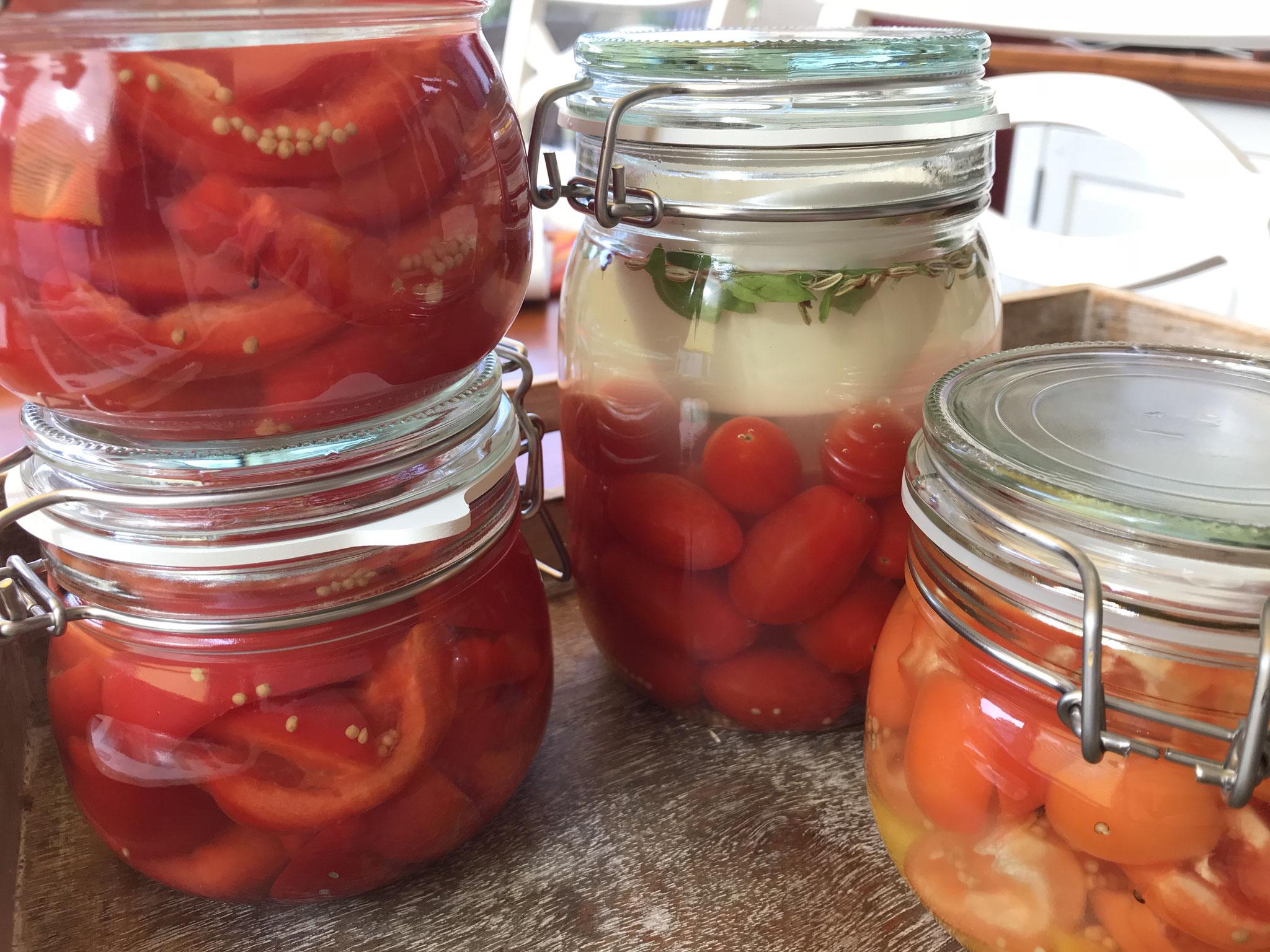 Tomatenpaprika aus Papas Garten