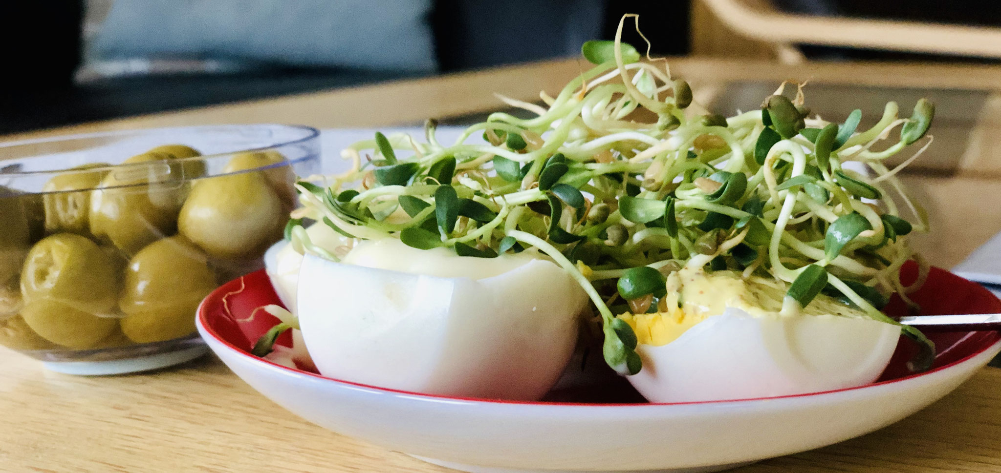 gekochte Eier mit Zitronenmayonnaise und Bockshornkleesprossen