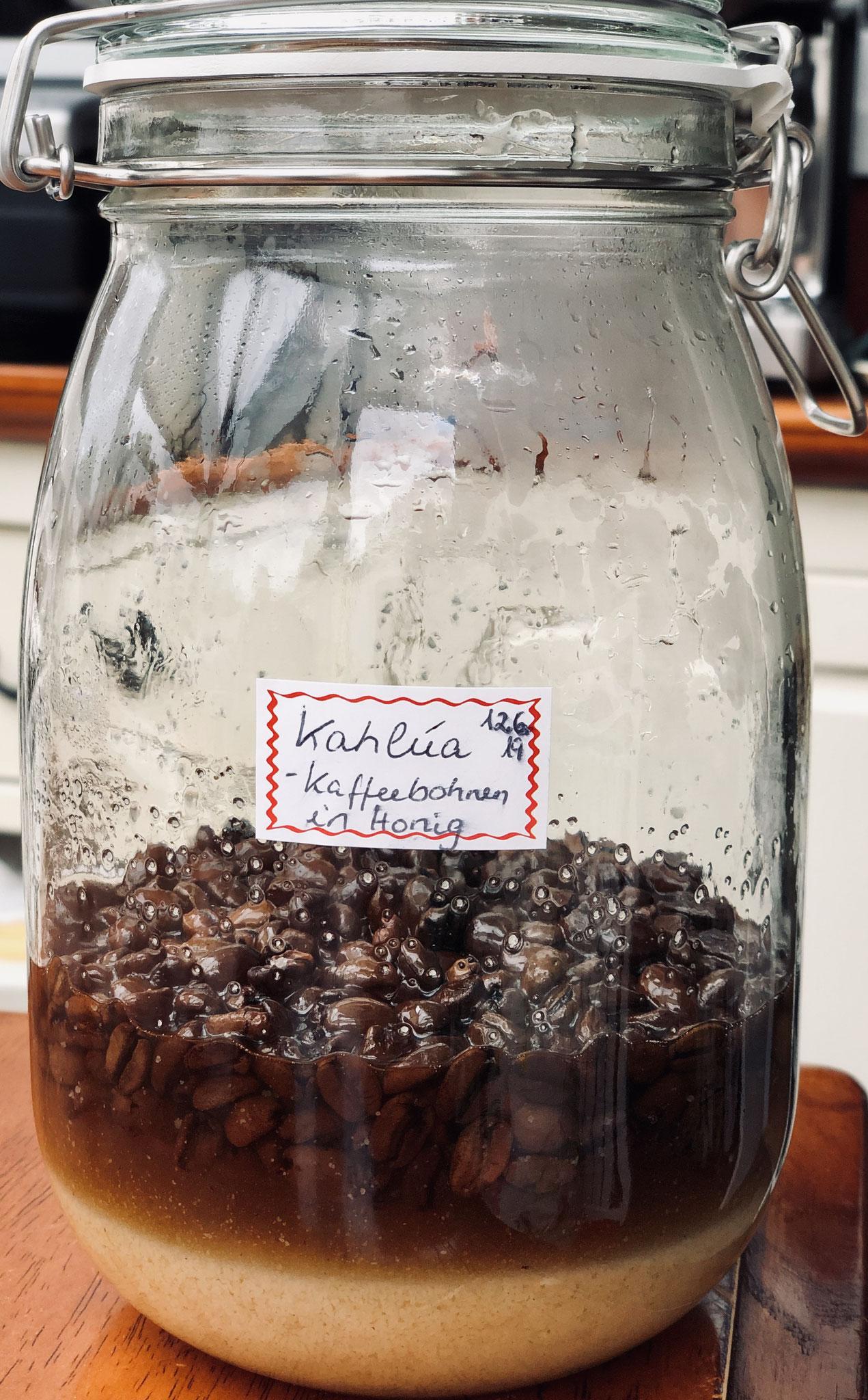 """Kahluá - fermentierter """"Kaffeelikör"""" /Essenz"""