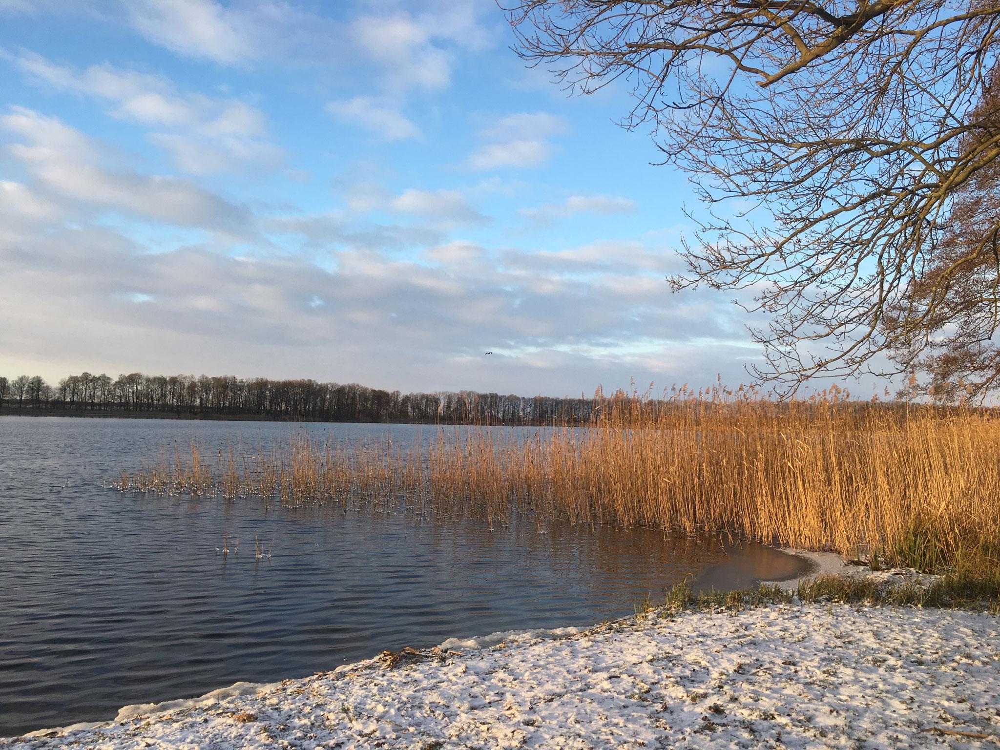 Klostersee Altfriedland