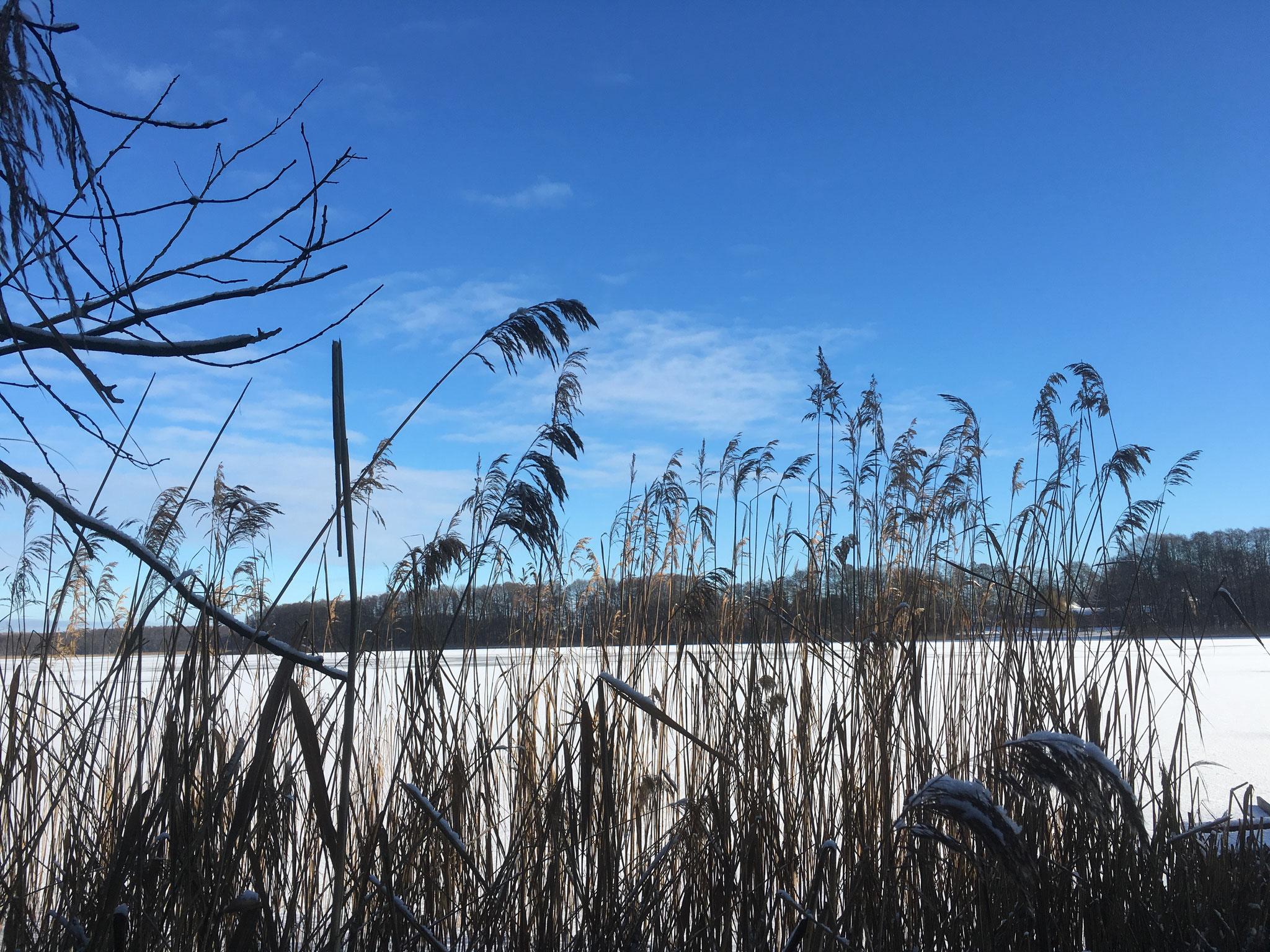 zugefrorener Klostersee Altfriedland