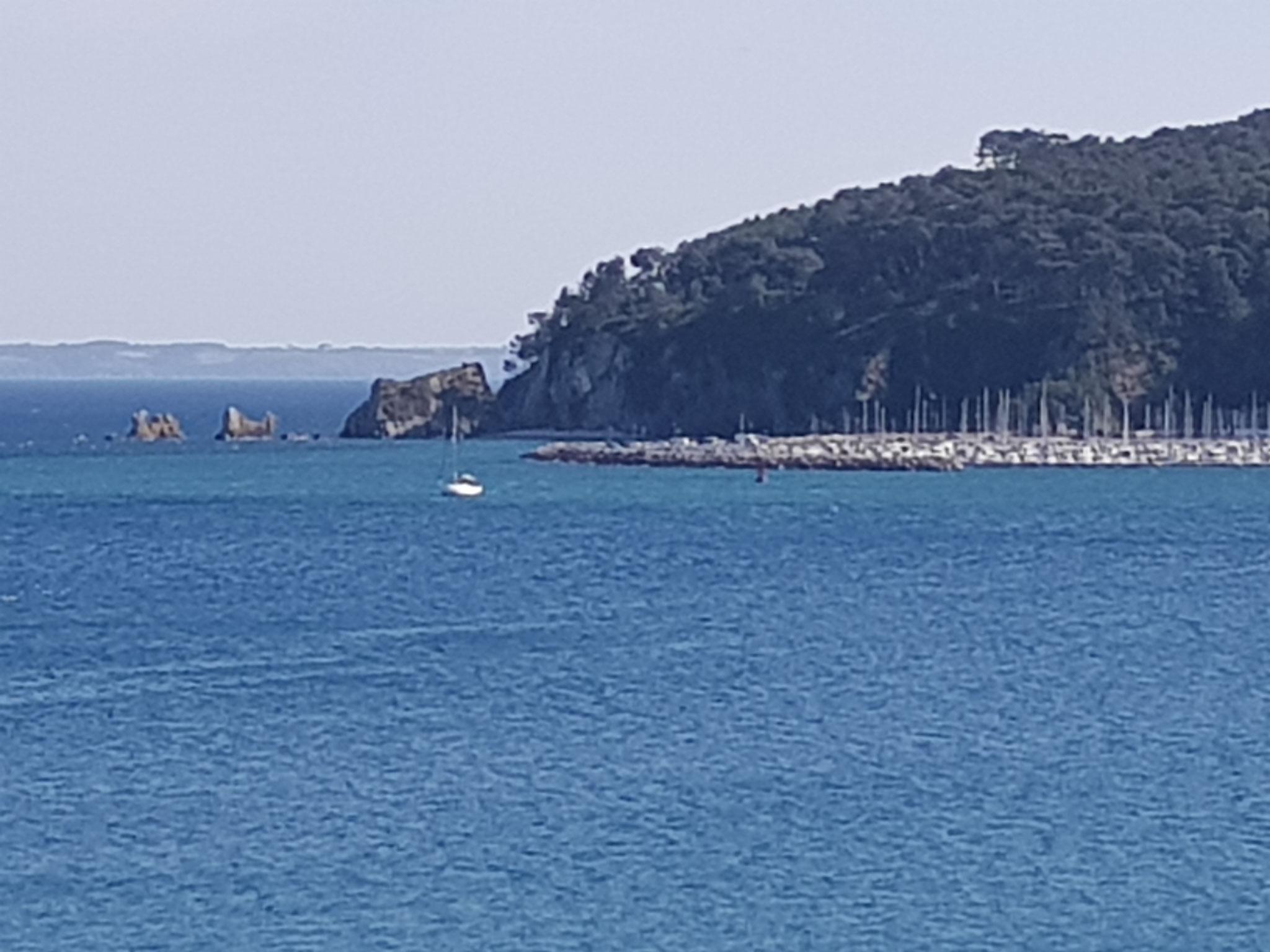 Le port de Morgat et la pointe du Kador vus du Portzic