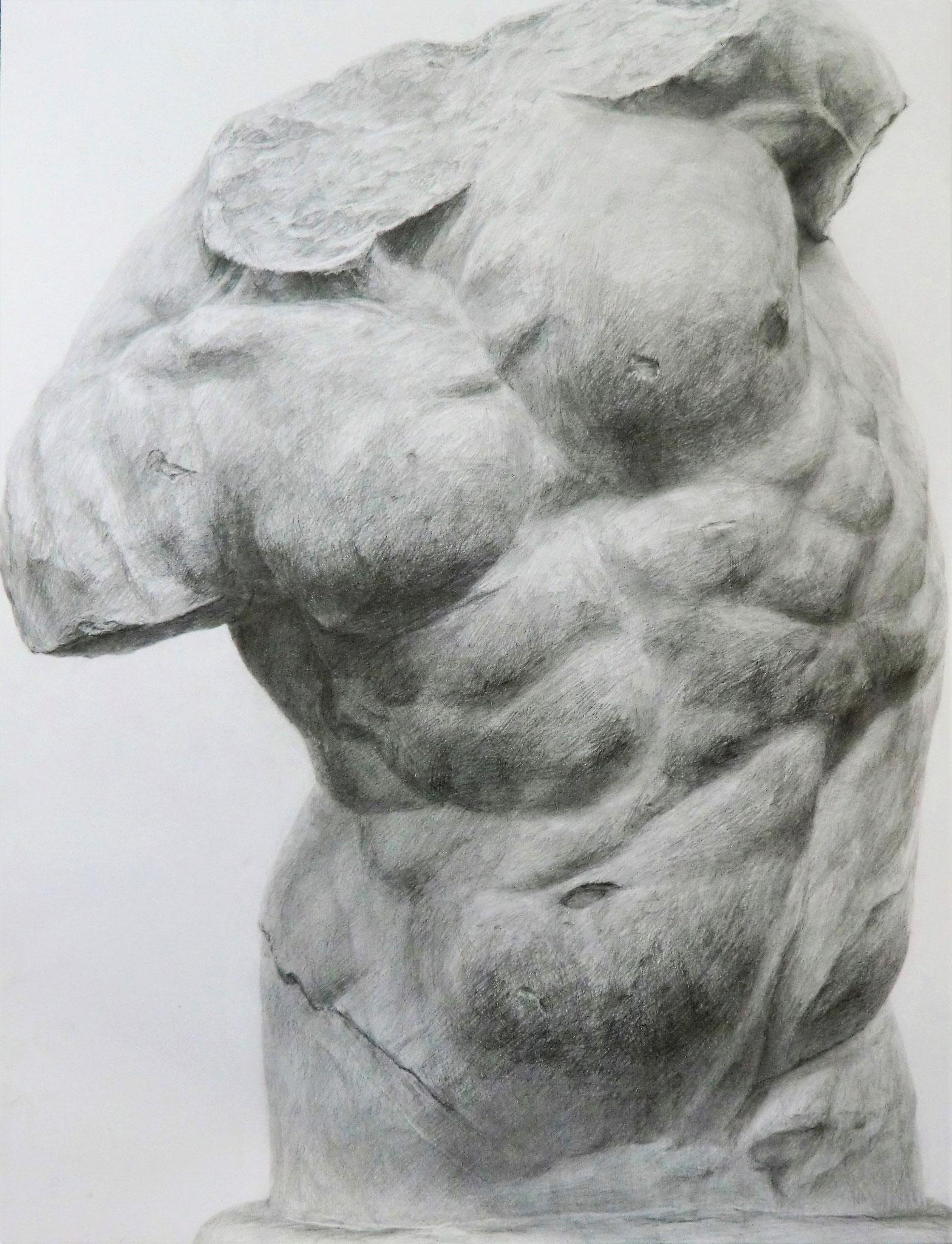 生徒作品9 鉛筆デッサン<ファウンのトルソ像> 630×480mm 白象紙 【日本画系】