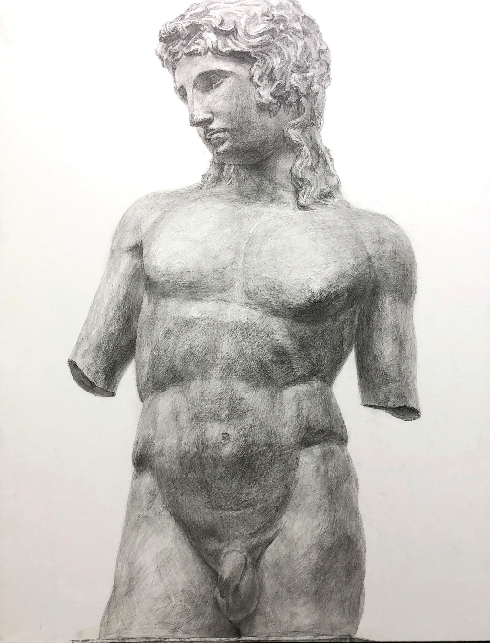 生徒作品7 鉛筆デッサン<アムール半身像> 630×480mm 白象紙 【日本画系】