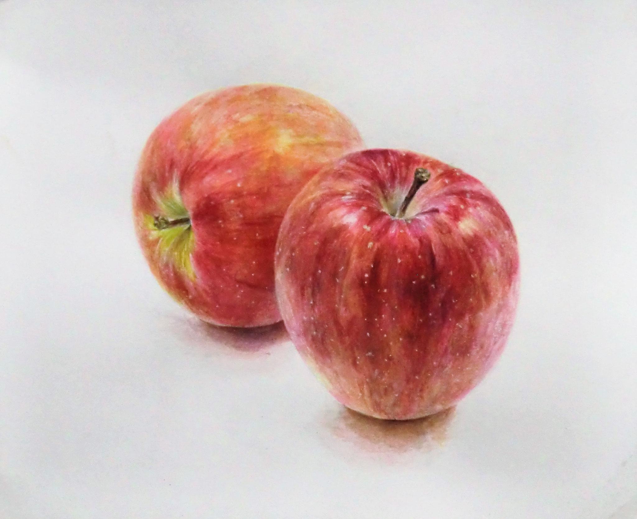 生徒作品95  透明水彩<リンゴ 2個> 196×240mm 白象紙 【日本画系】