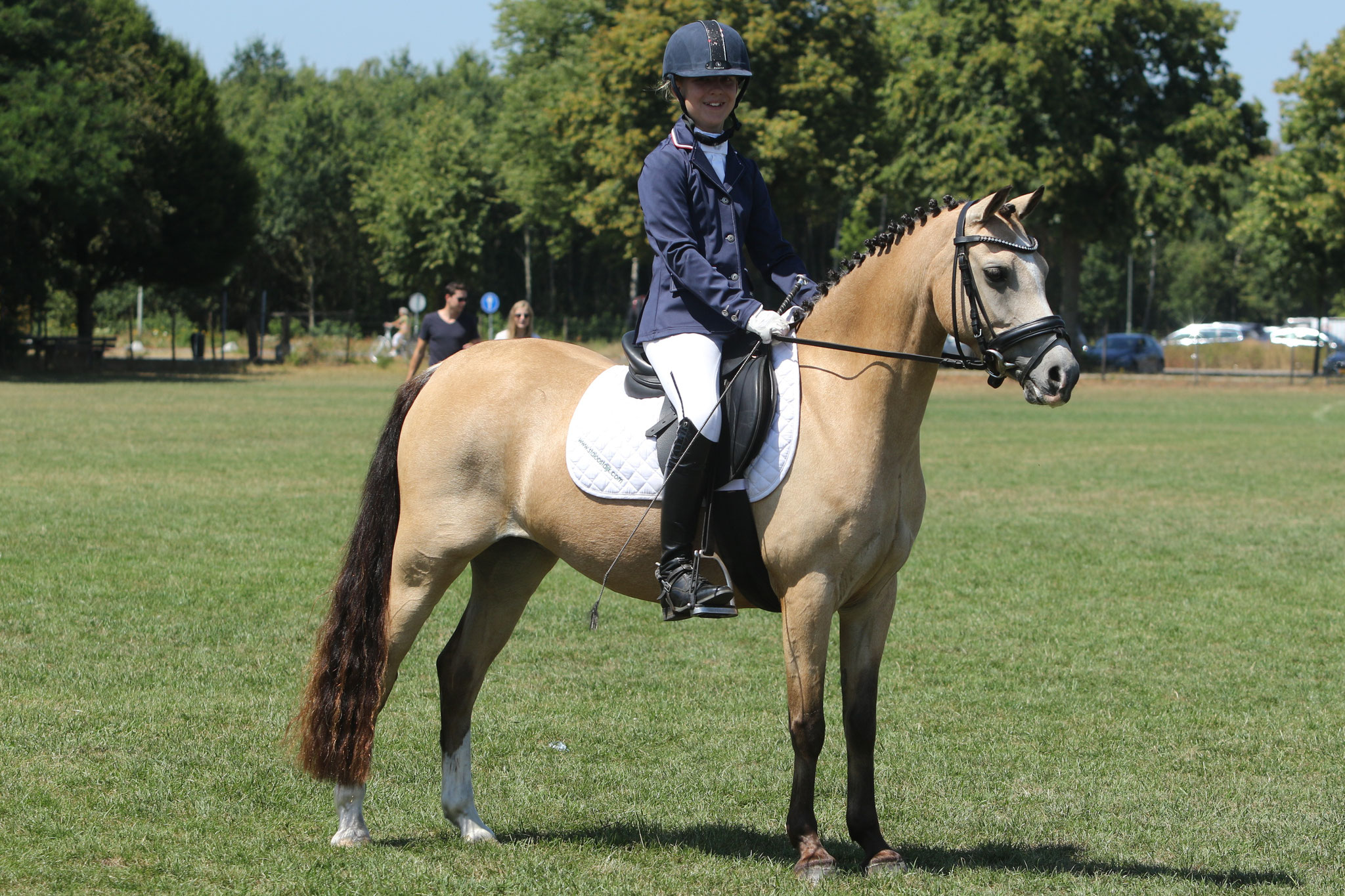 Oostdijk's Dancing Delyth, 2009, mare (Griashall Kiwi) multi champion in hand, Kroon, Sport, Preferent - sold to Italy