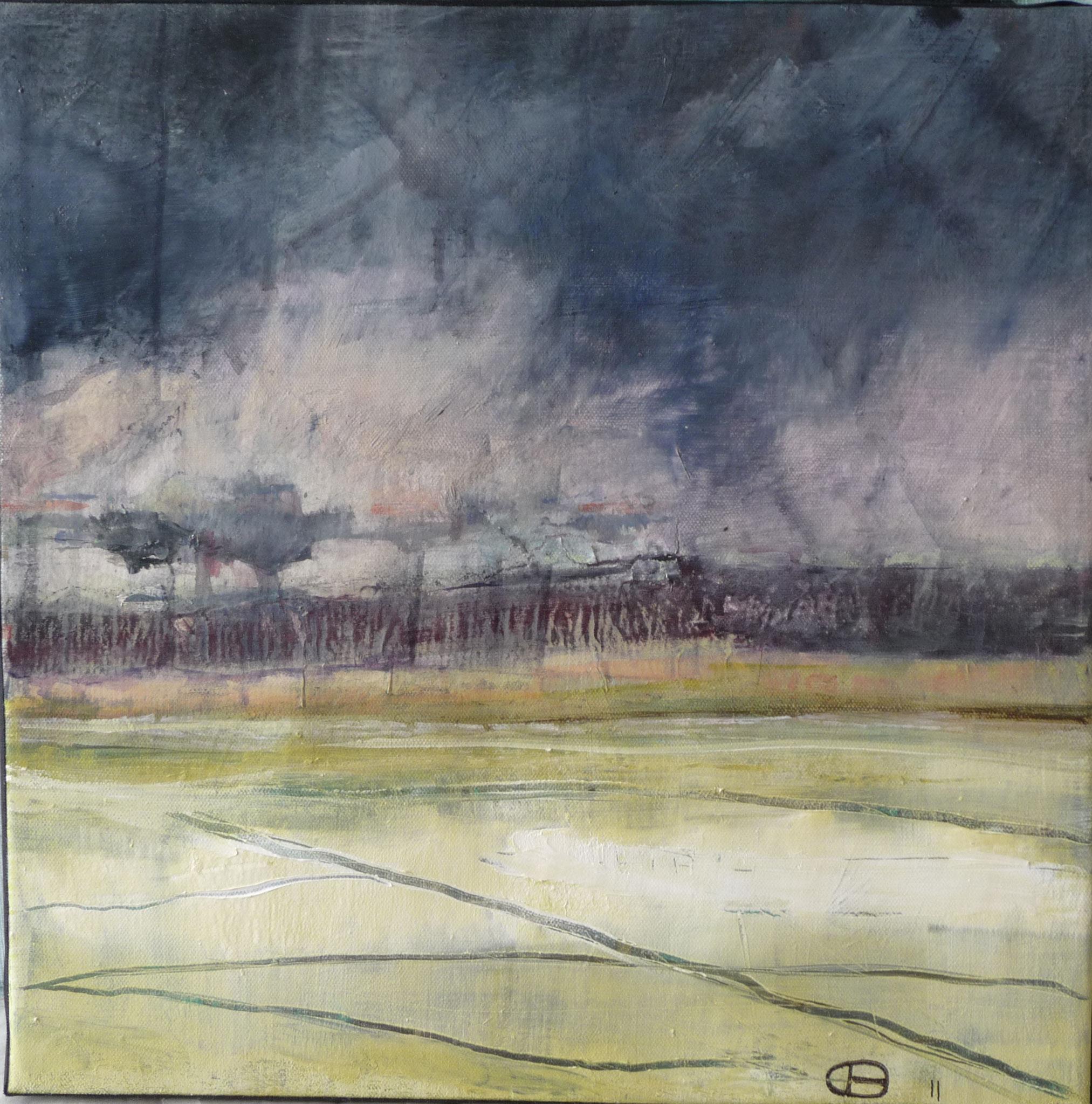 Sans titre 2   ---   2011 - Acrylique sur toile - 30 x 30 cm