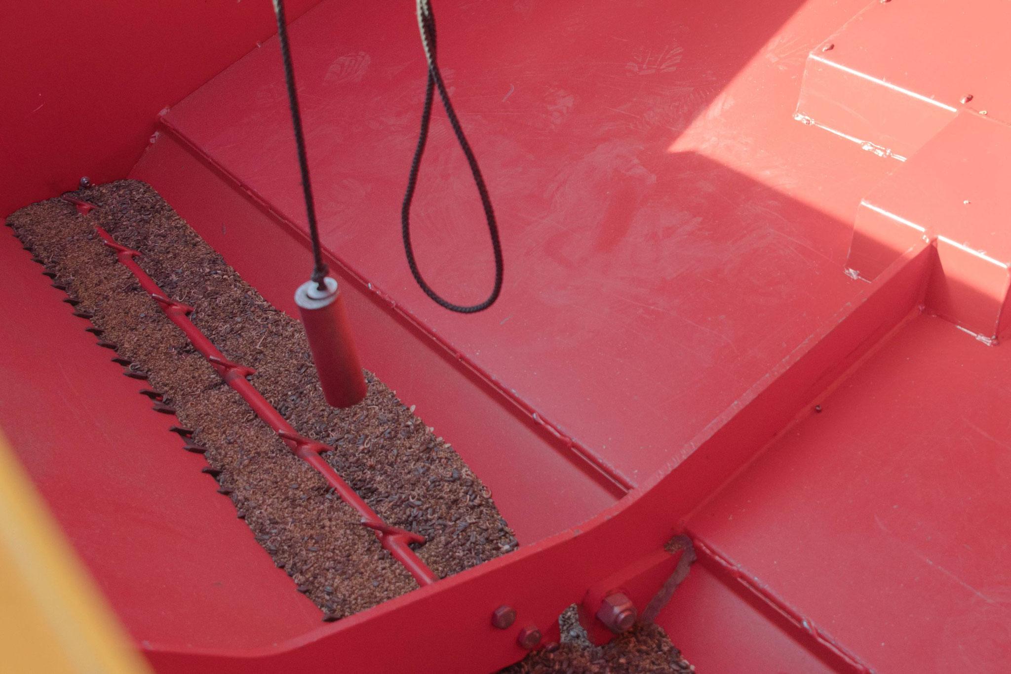 Überprüfen der Menge des Saatgutes