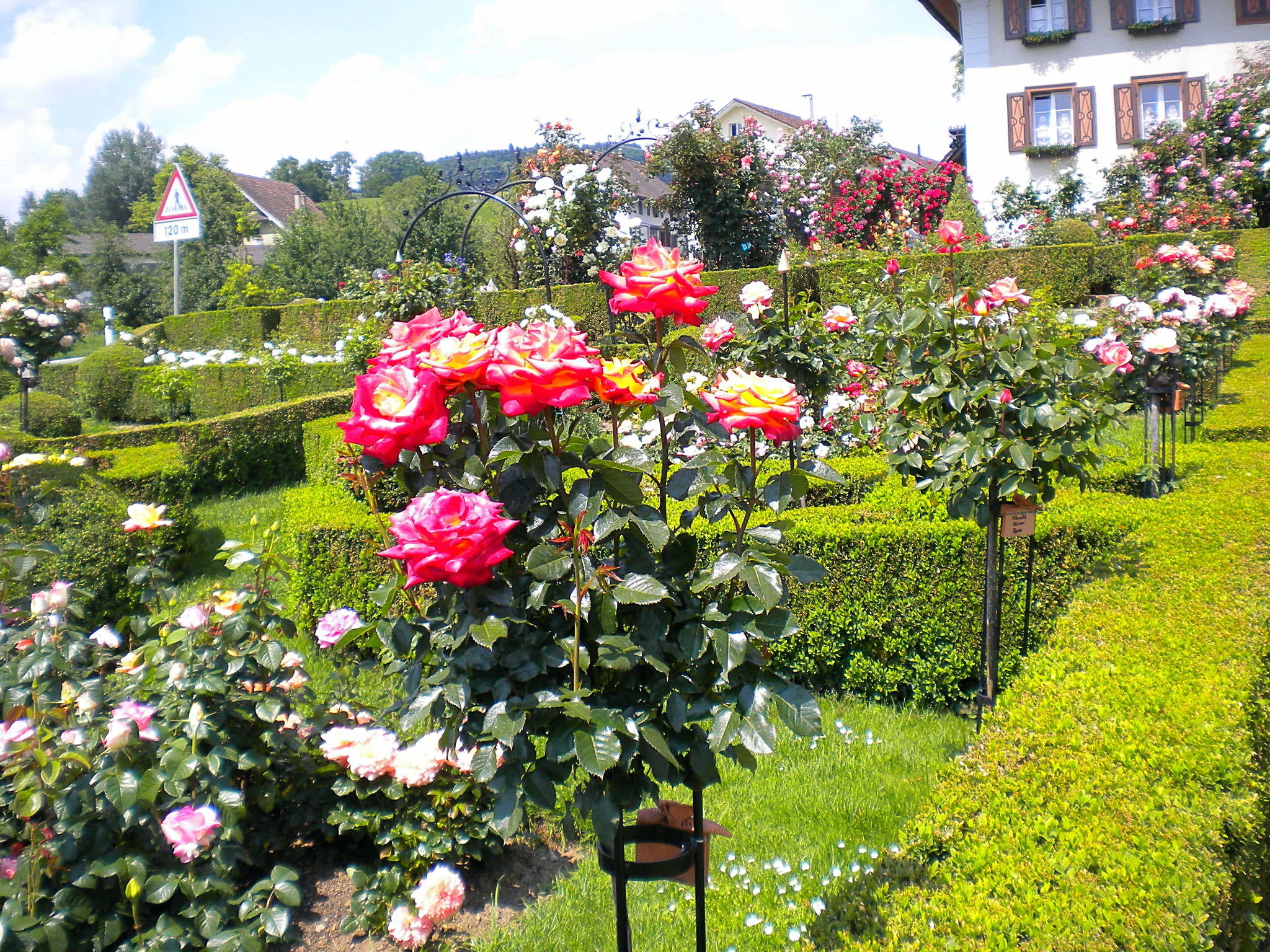 Landfrauenreise barocker Rosengarten Kollerhuus