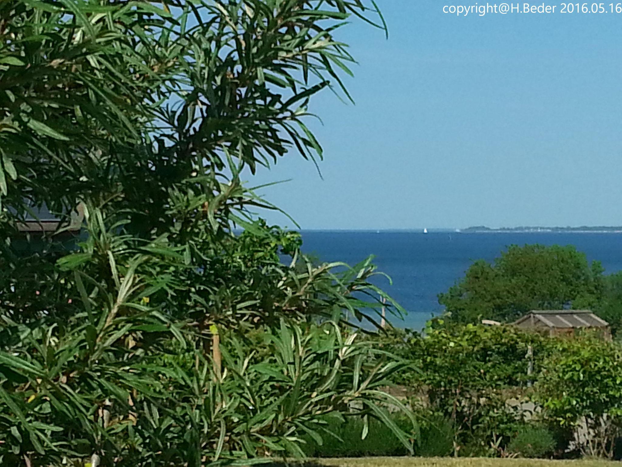 Blick vom Ferienhaus über die Wiek