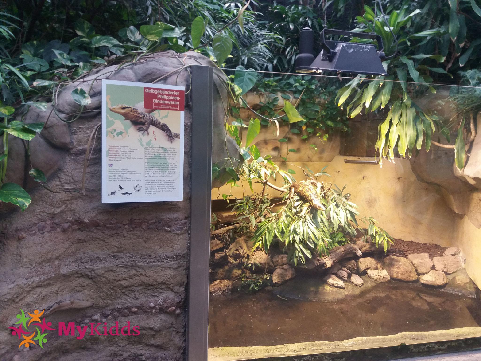 Kölner zoo parken