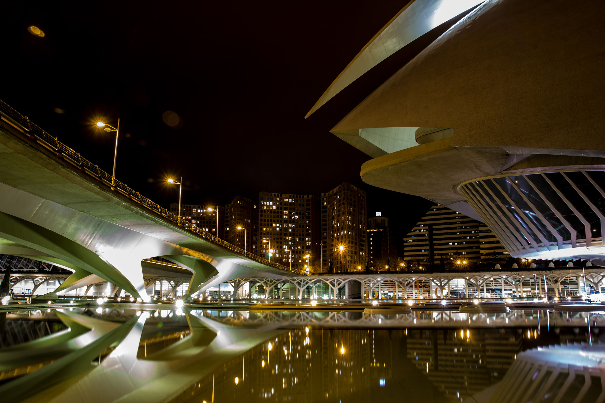 06_Ciutat de les Arts e les Ciencies in Valencia / Spain.