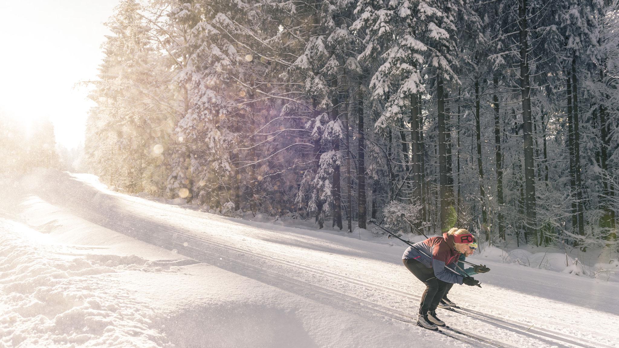 Traumhafte Loipen im Nordischen Zentrum (c) OÖ Tourismus GmbH | Lugmayr