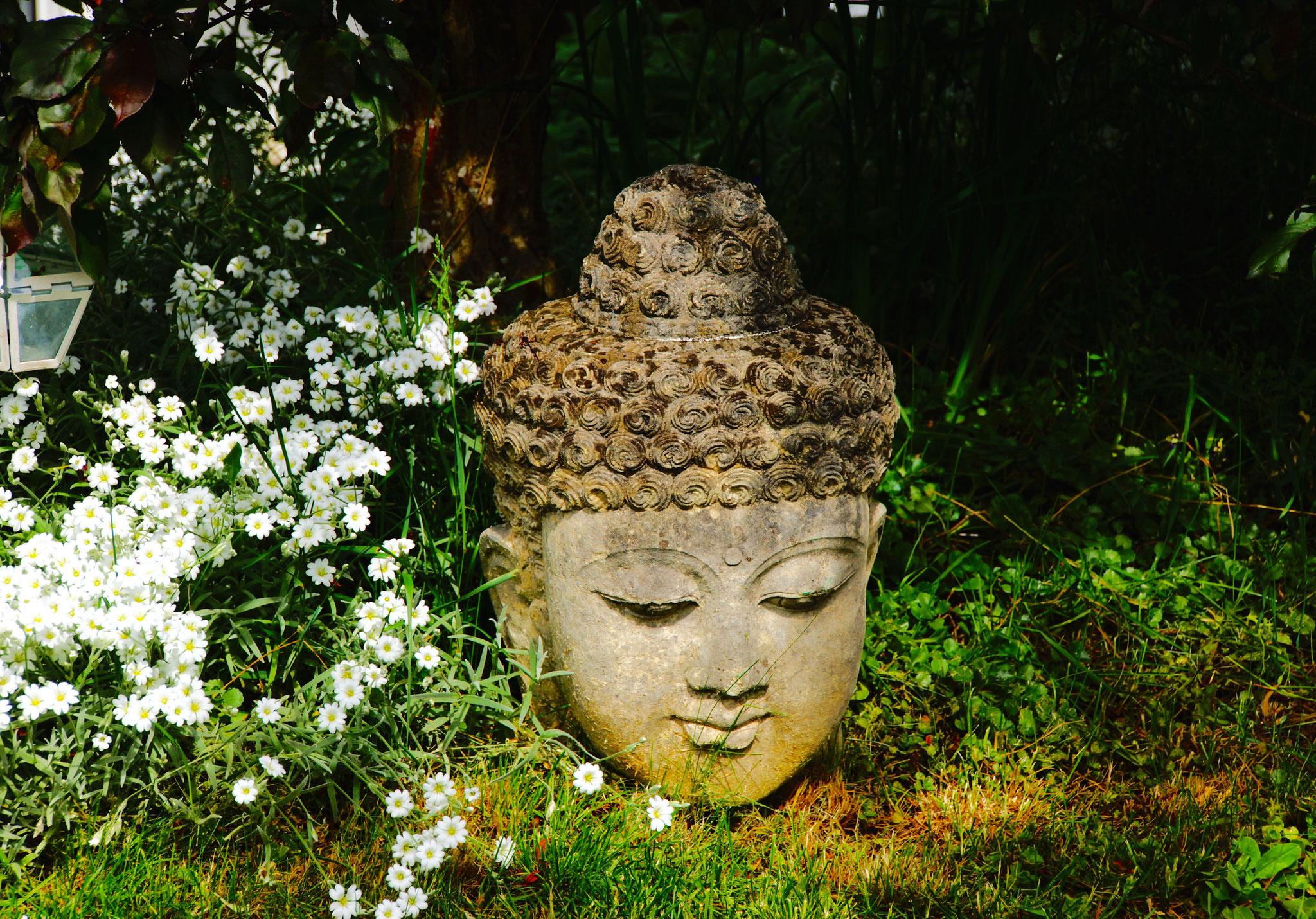 Budha im Garten