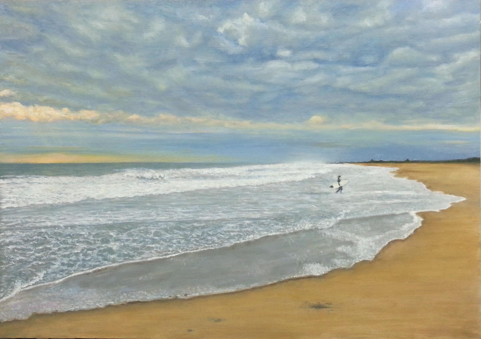 Playa del saler tormentosa