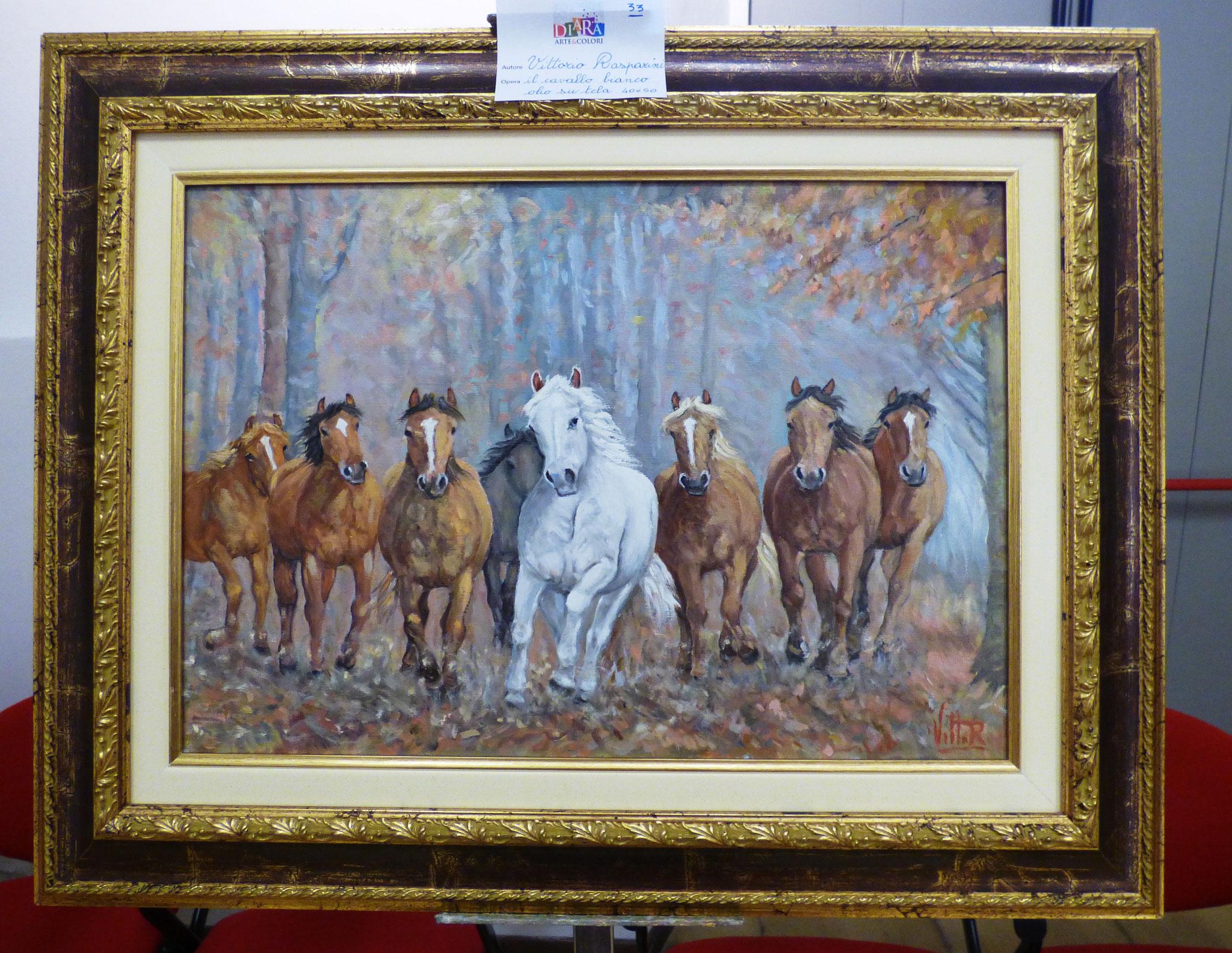 Vittorio Rasparini il cavallo bianco olio su tela 40x50