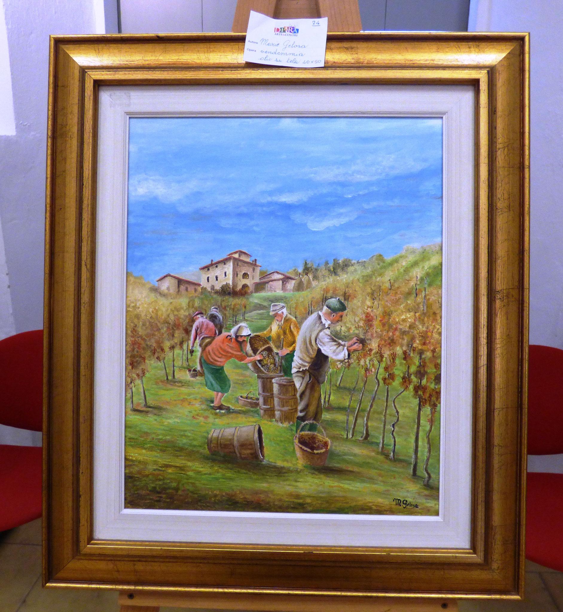 Mario Gelosa vendemmia olio su tela 40x50