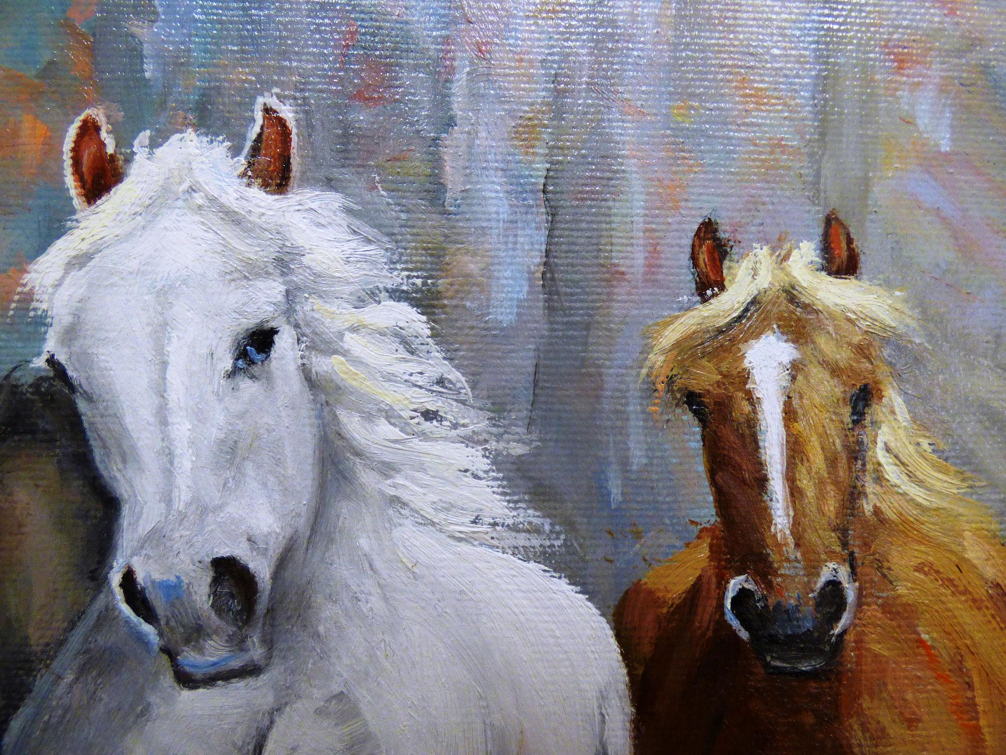 particolare Vittorio Rasparini il cavallo bianco olio su tela 40x50
