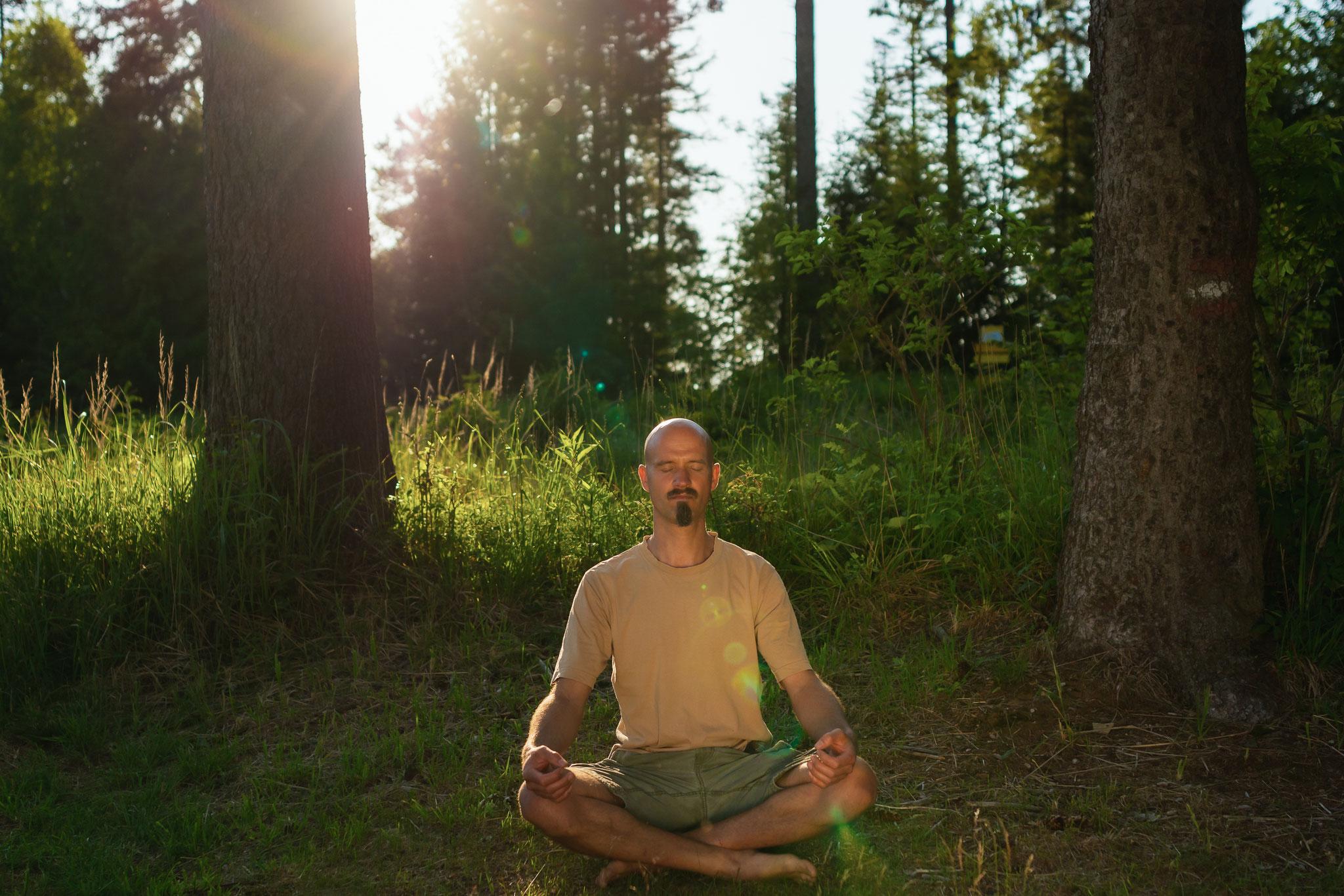 Meditation am Jauerling