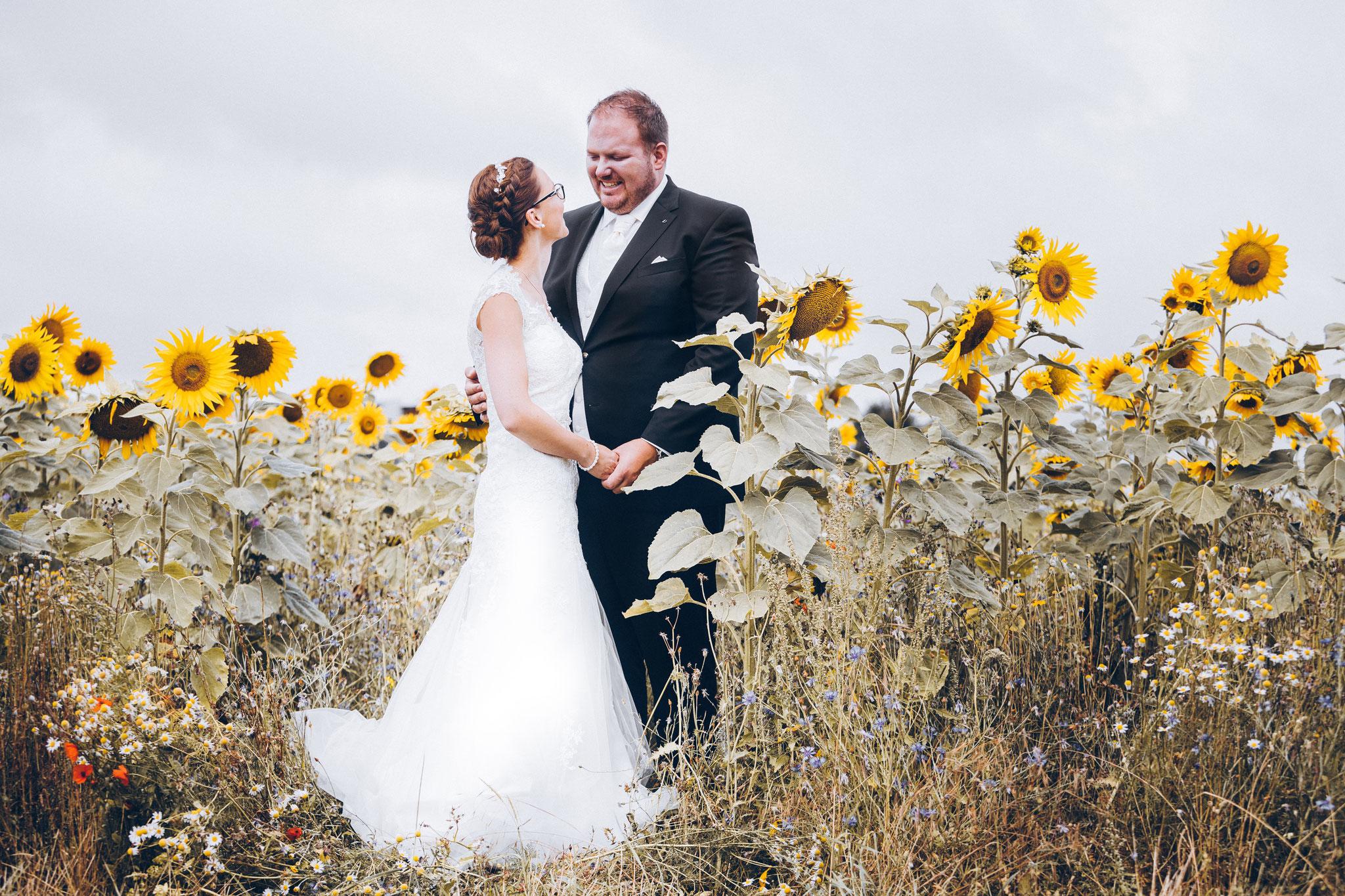 Hochzeitsfotos Sonnenblumenfeld bei Würzburg