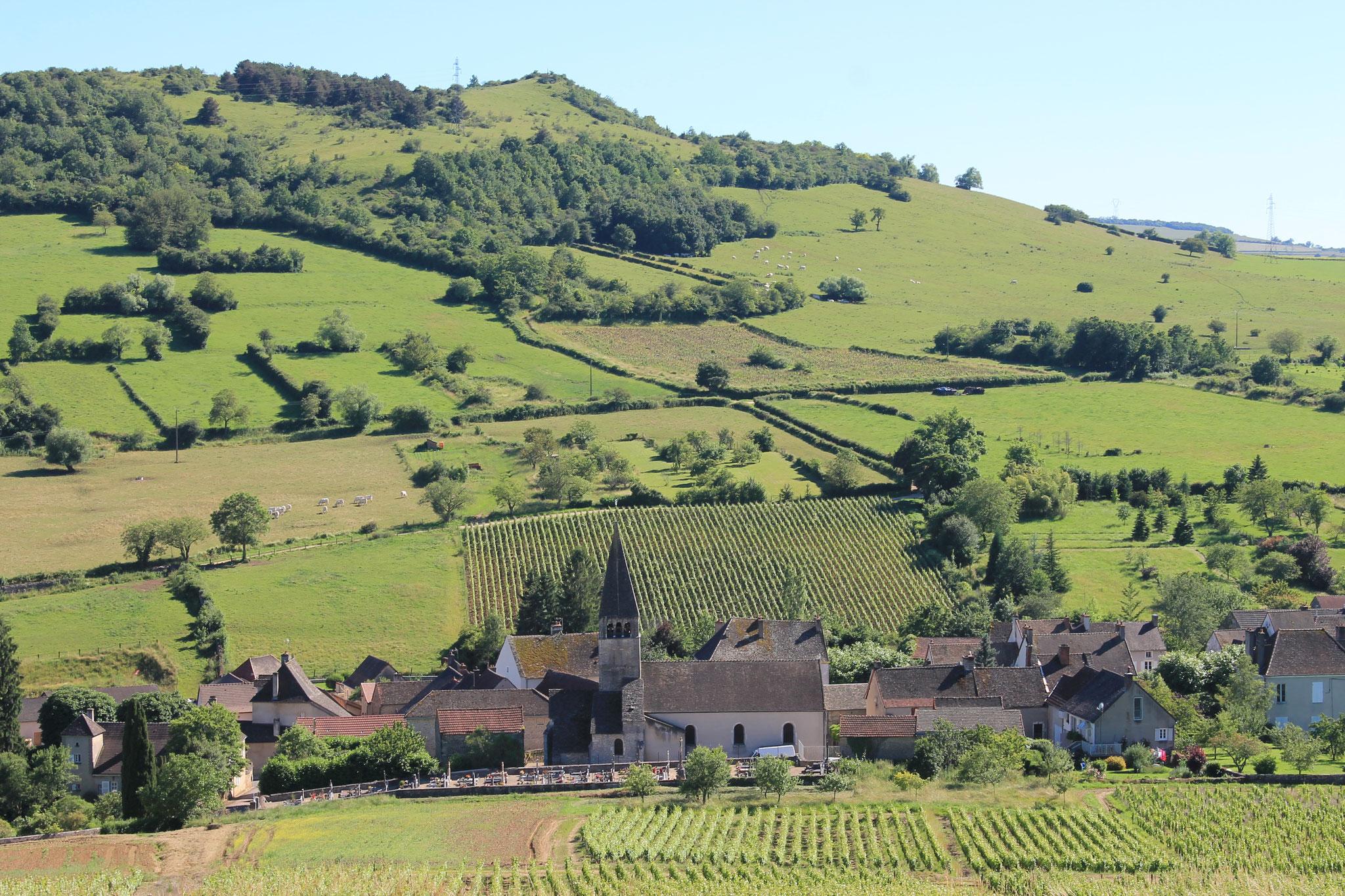 Le village de Jambles dans son écrin de vignes