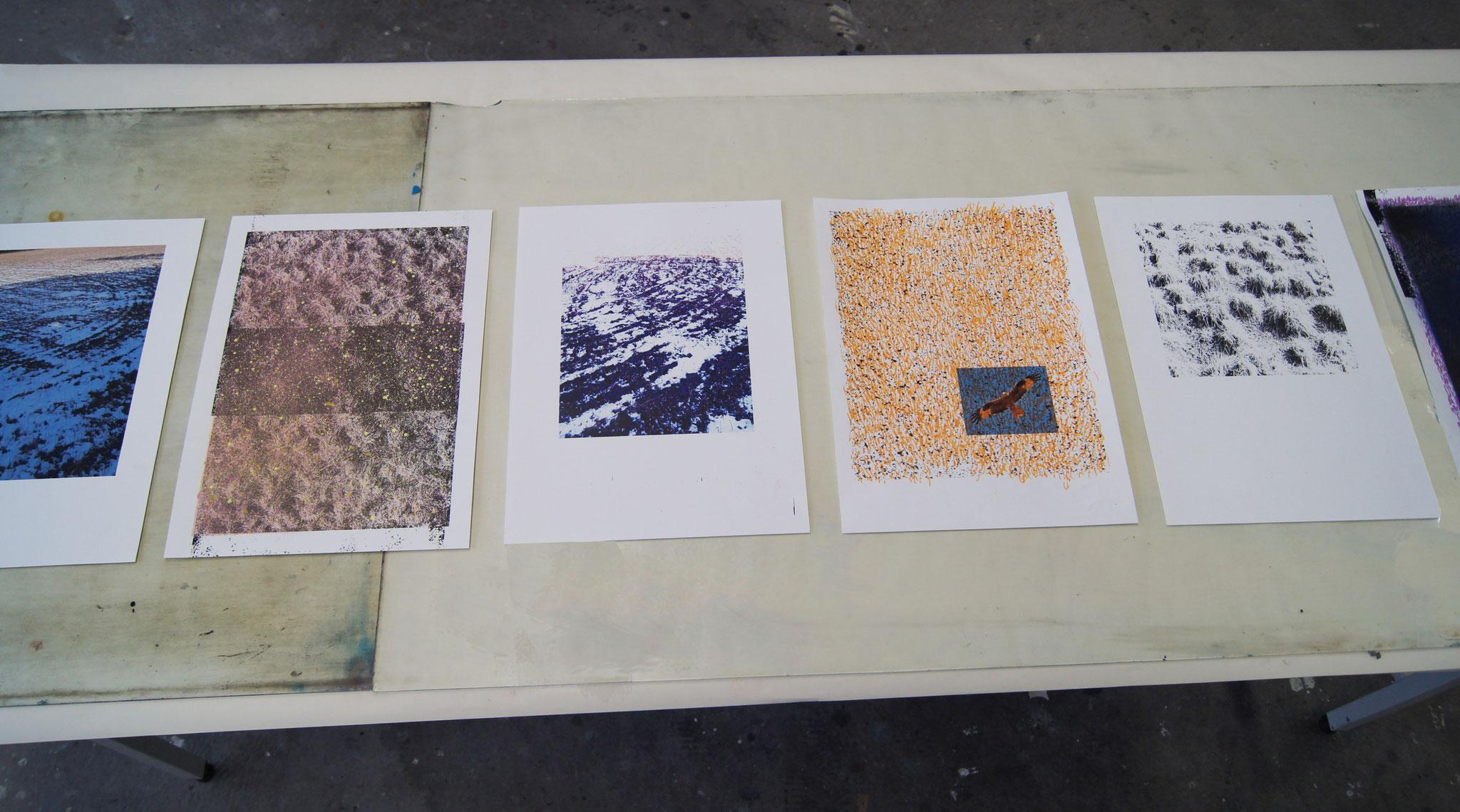 Feld 1-6, Digitalfotografie, Zeichnung, Acrylspray,Markierungsspray  29,7cm x 42cm