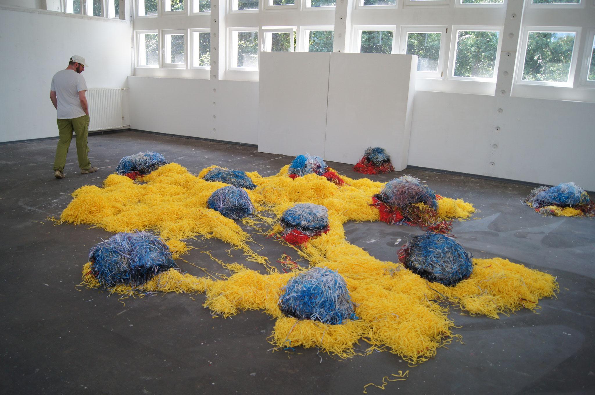 hairy field 2, Ausstellungsansicht Sommerfest Schloss Wiepersdorf, 2018