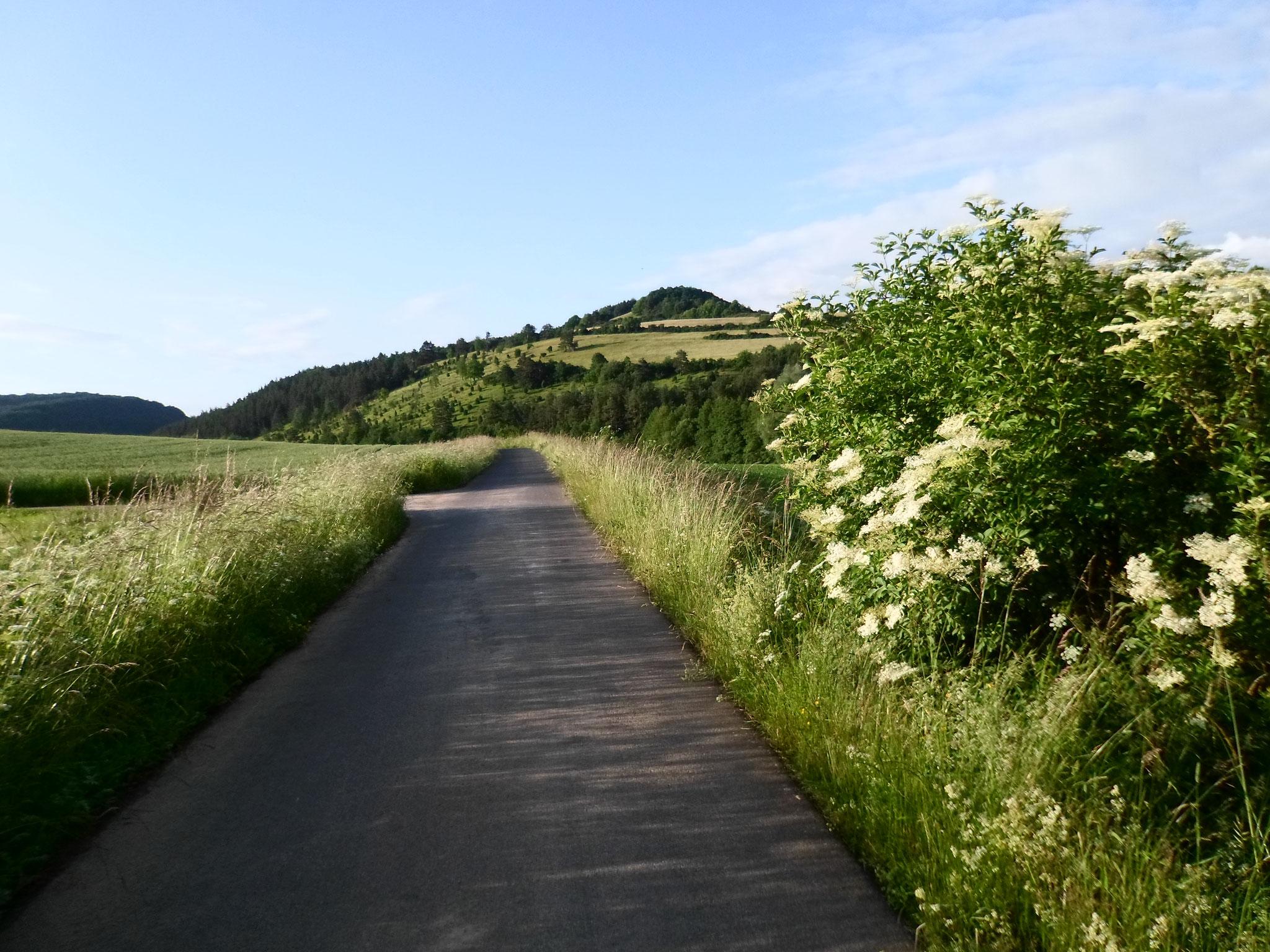 Auf dem Radweg Richtung Wenigentaft
