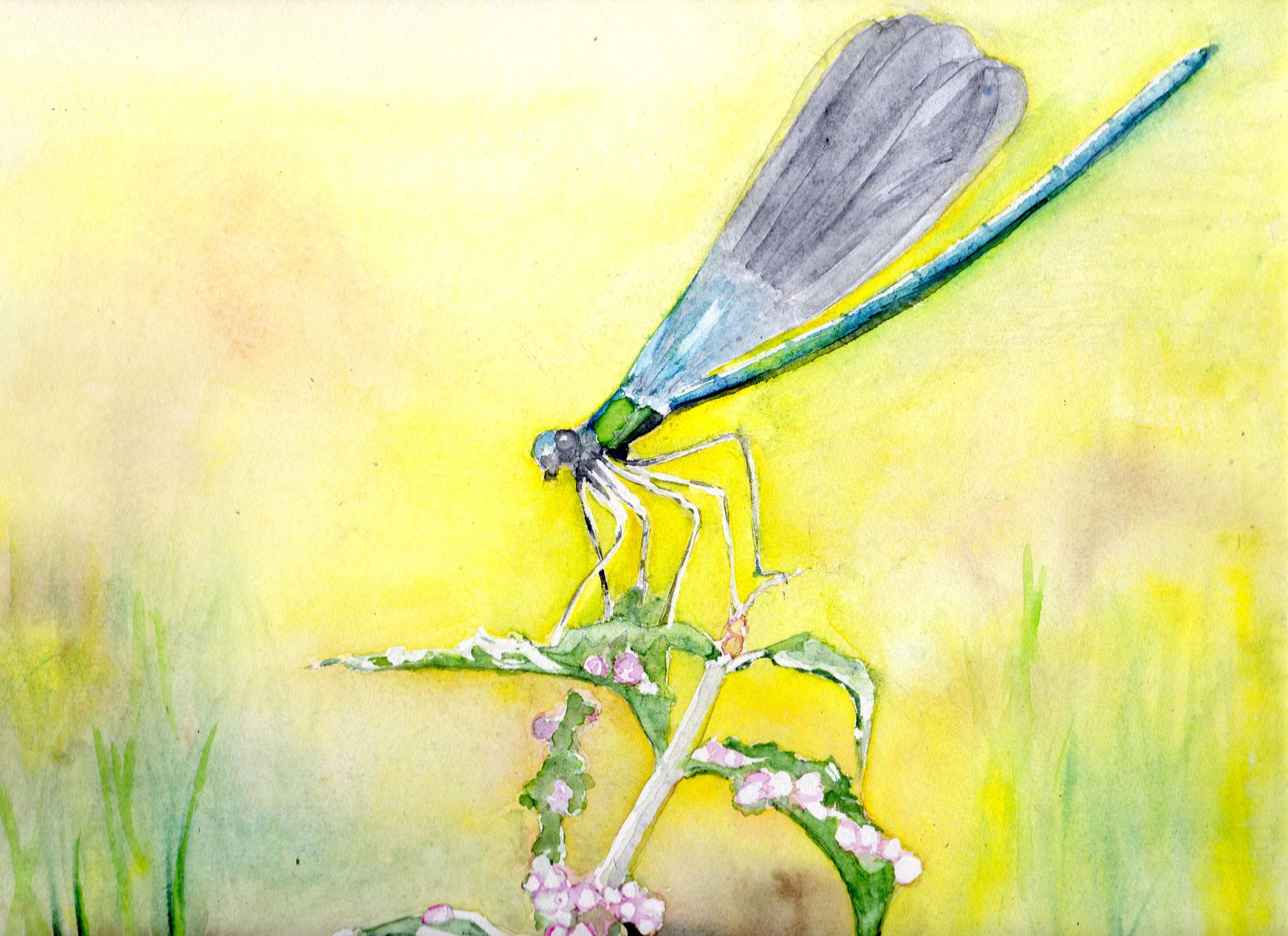 La libellule; inspirée pat une photo de Jehanne